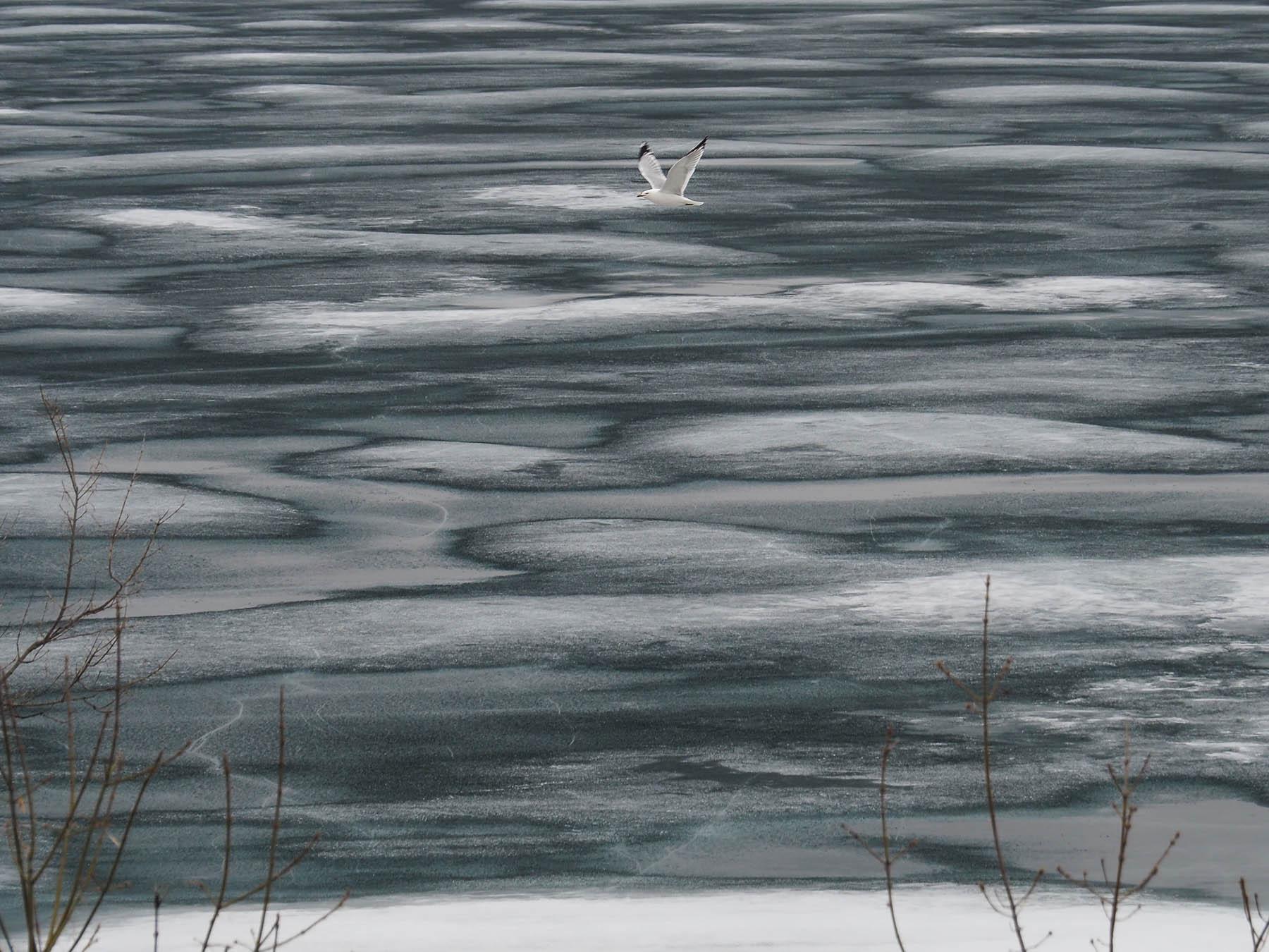 eisbedeckter Lake Huron