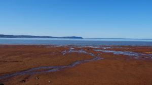 Fundy Bay