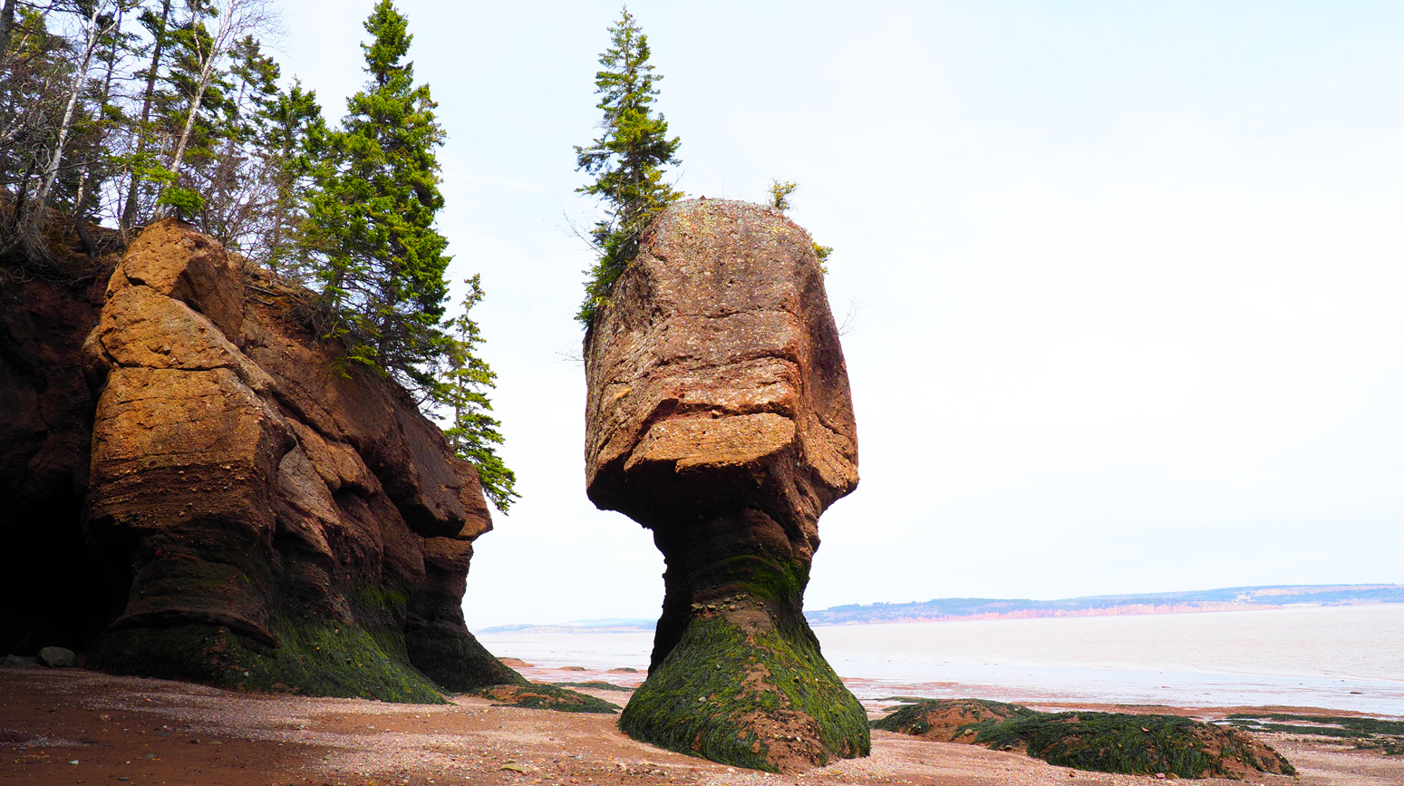 Hopewell Rock 2