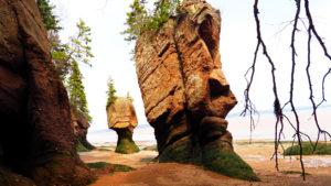 Hopewell Rock 3