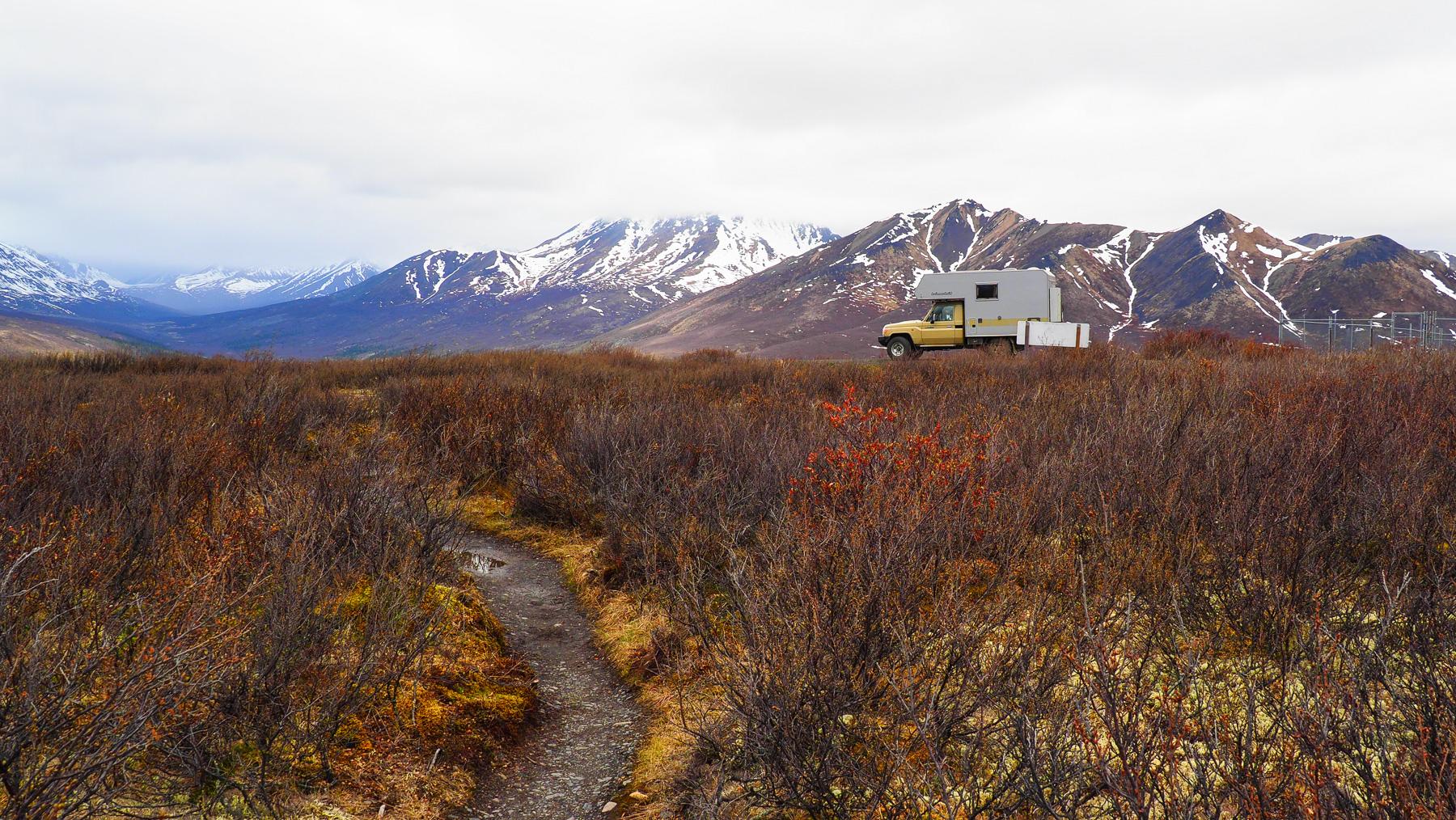 Ein Hauch von Tundra