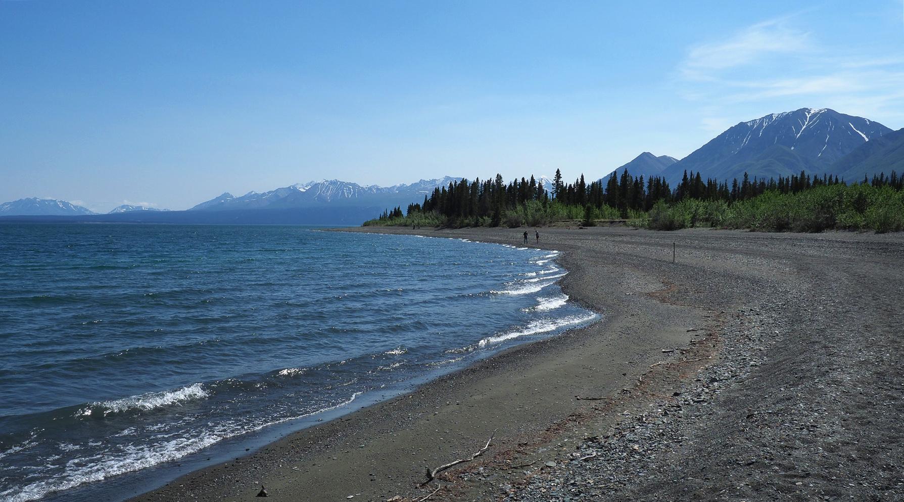 Kluane Lake Wanderung und Camping