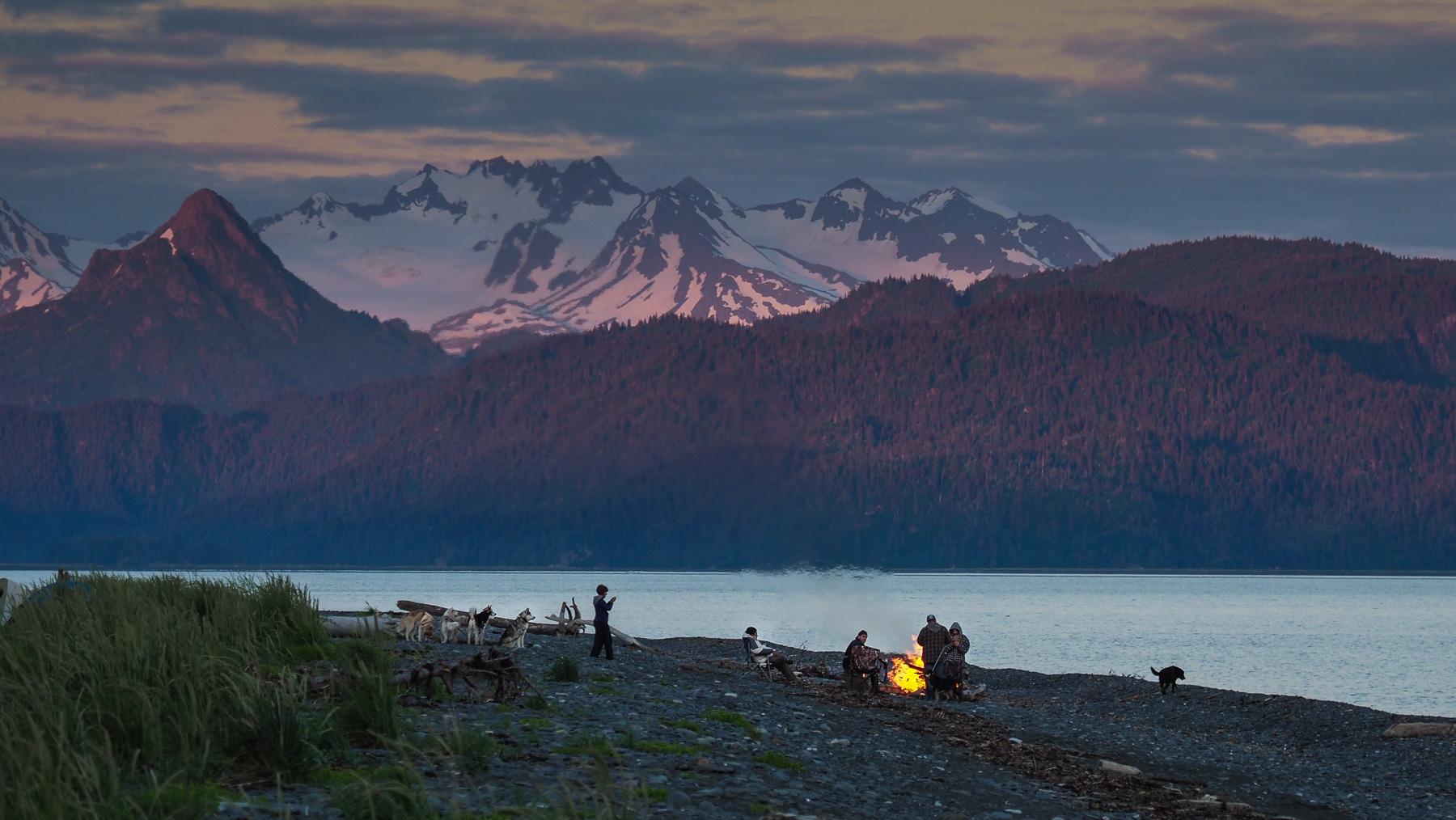 eine Gruppe mit ihren Schlittenhunden verbringt den Abend am Strand