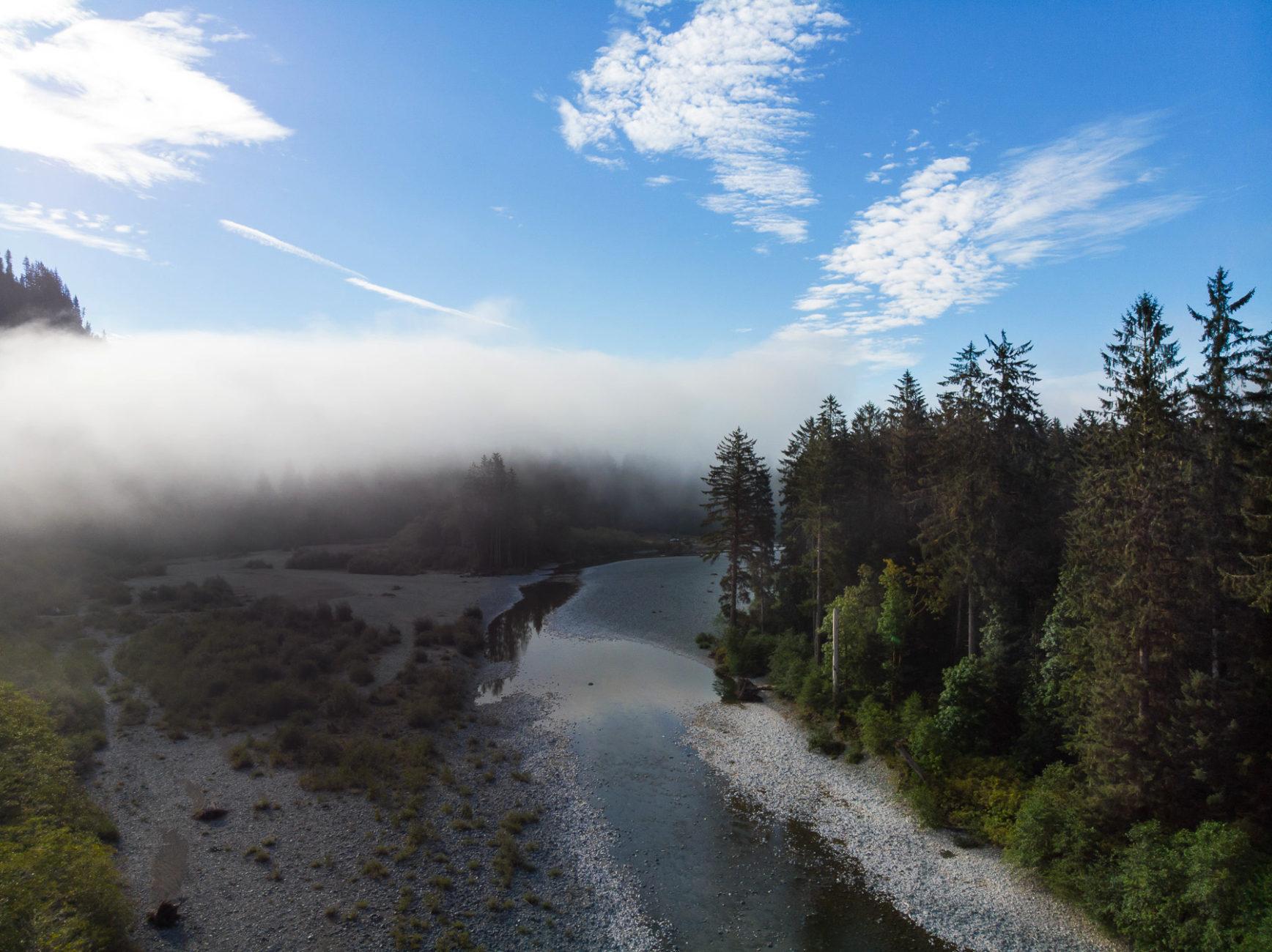 herrliche Morgenstimmung, wenn der Nebel sich lichtet