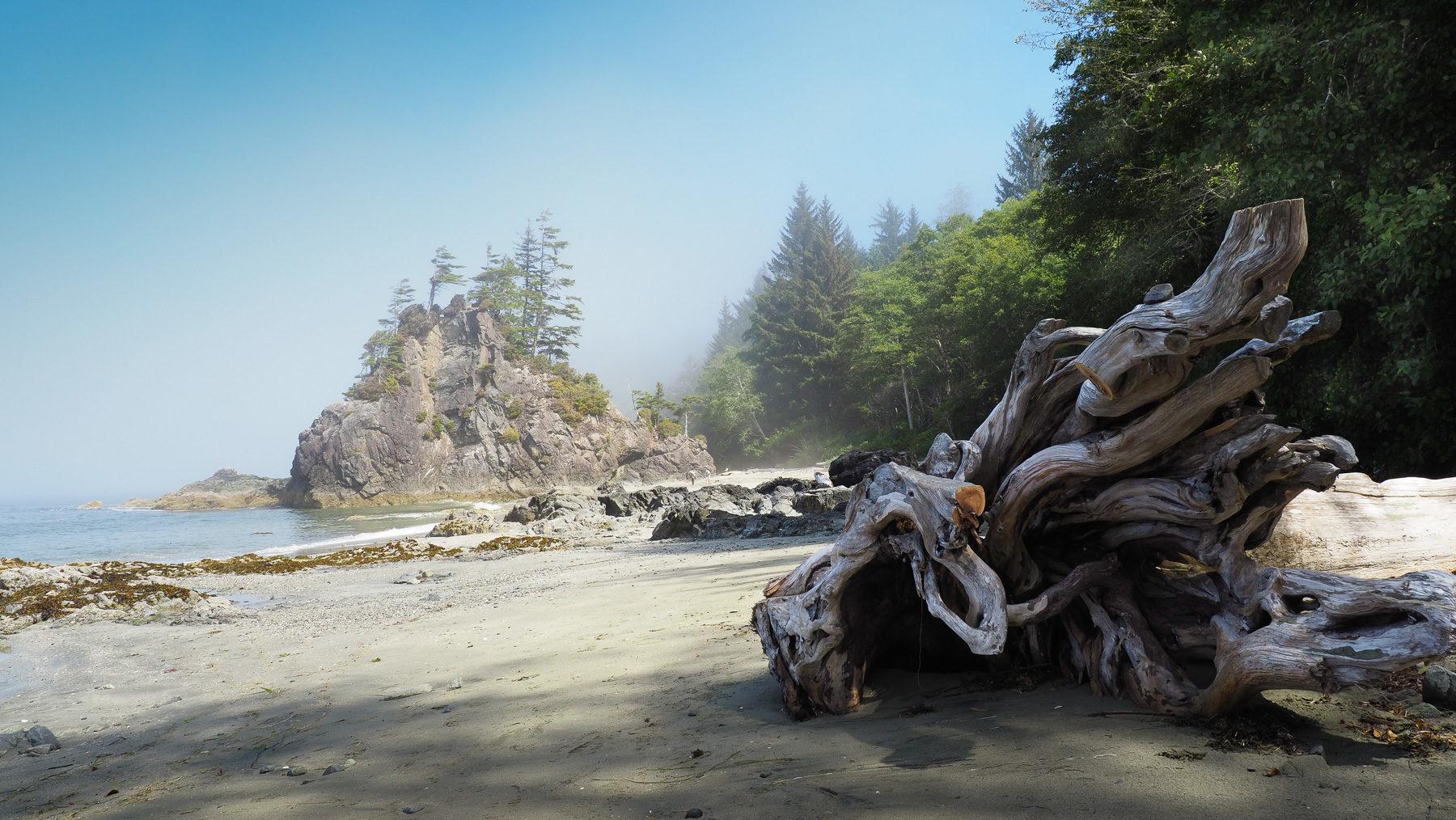 Westküstenromatik, Brady's Beach