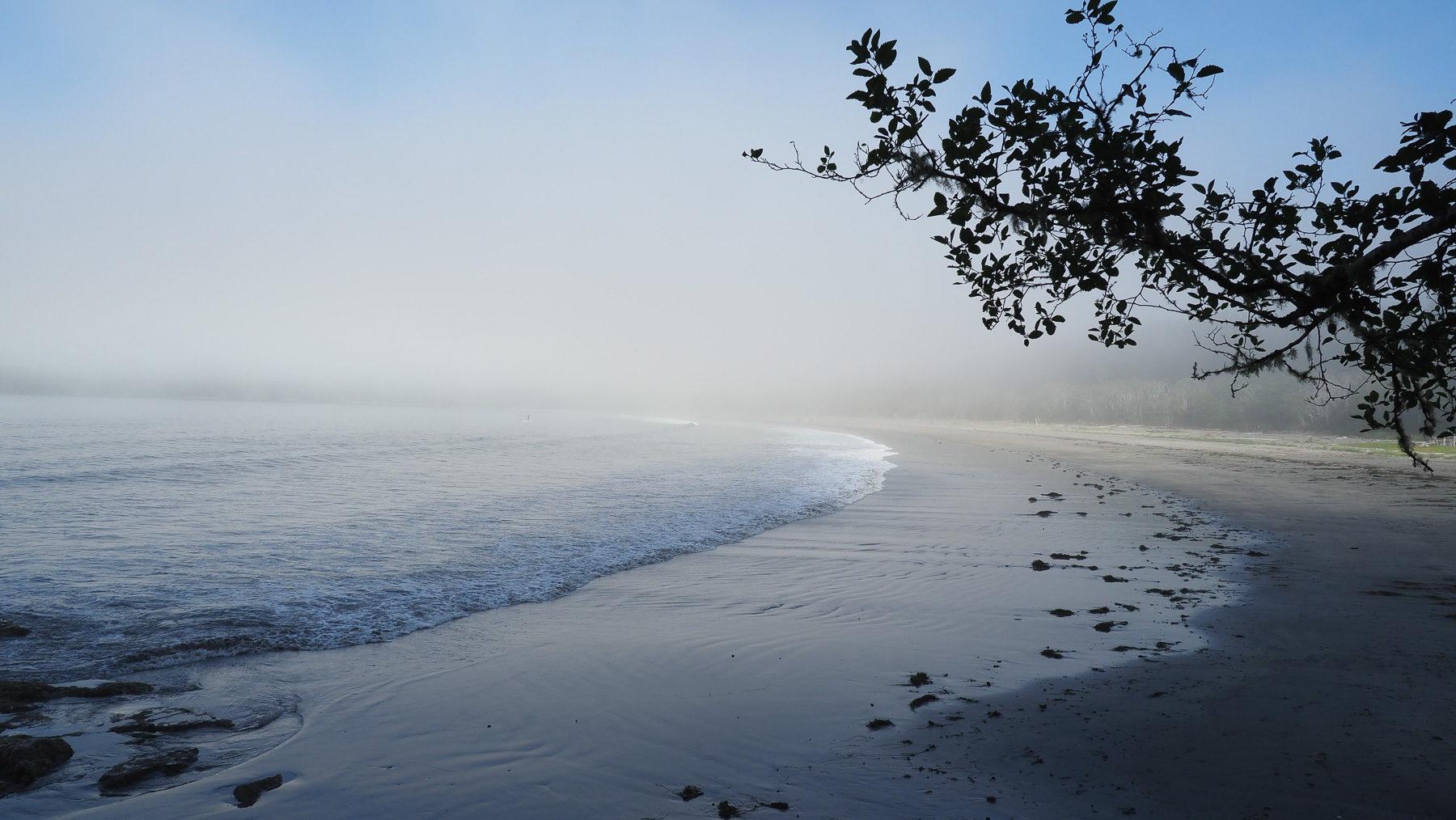 schöne Pazifikstrände, nur meistens im Nebel, das Wasser eiskalt