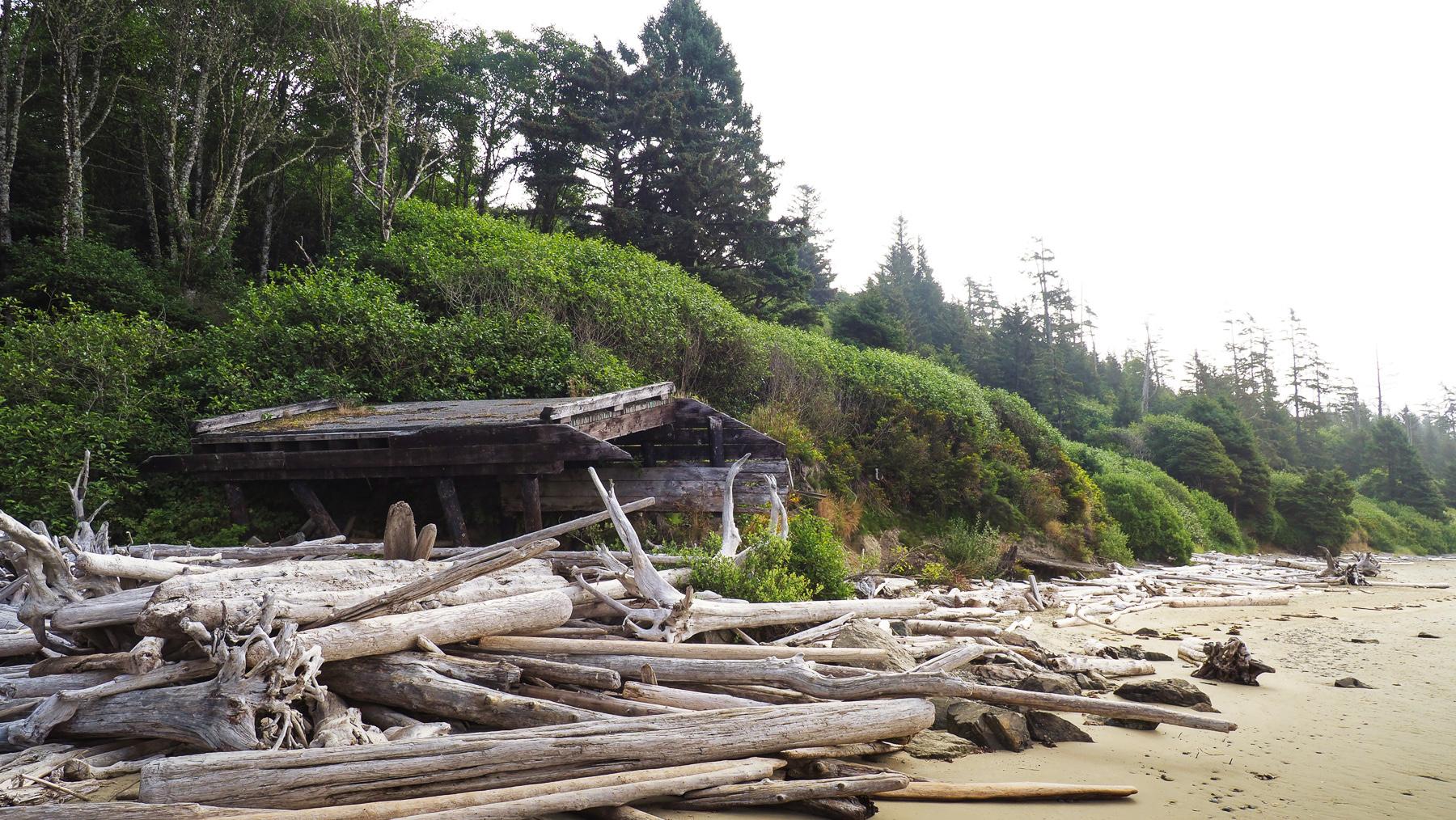 viel angeschwemmtes, ausgebleichtes Holz an den Stränden