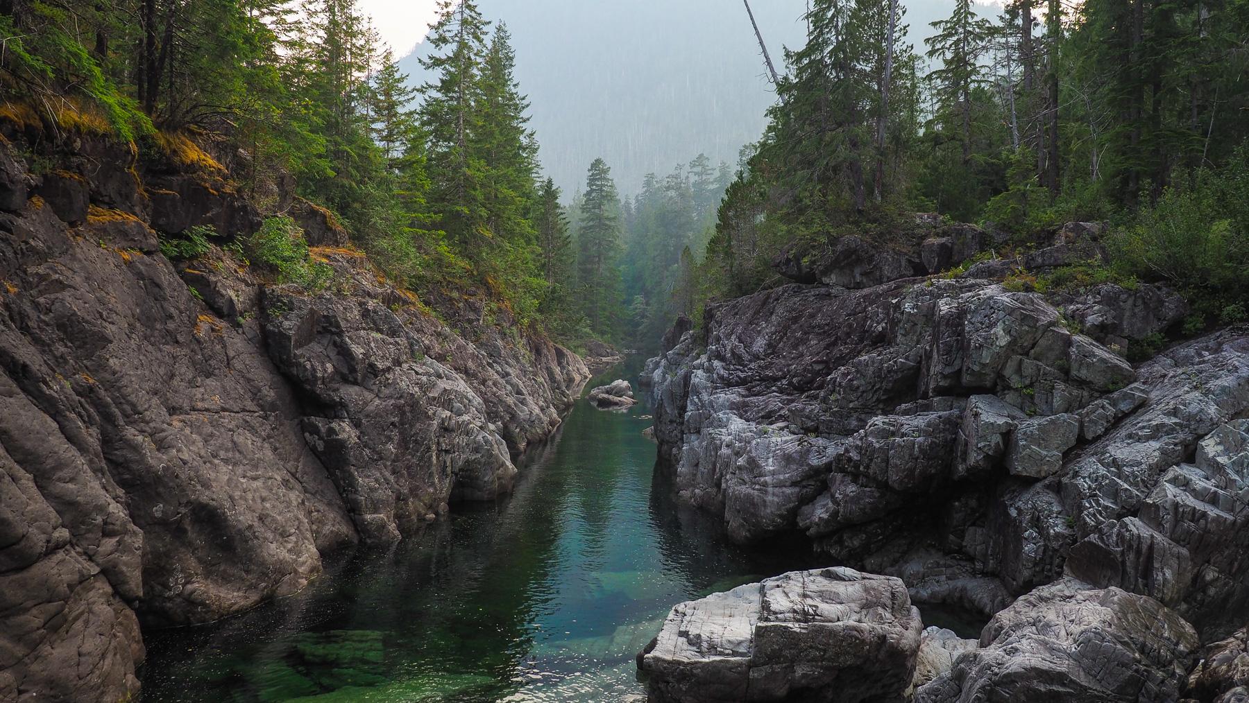 ein Bär stromert entlang der gegenüber liegenden Flußseite (sieht man hier nicht mehr)