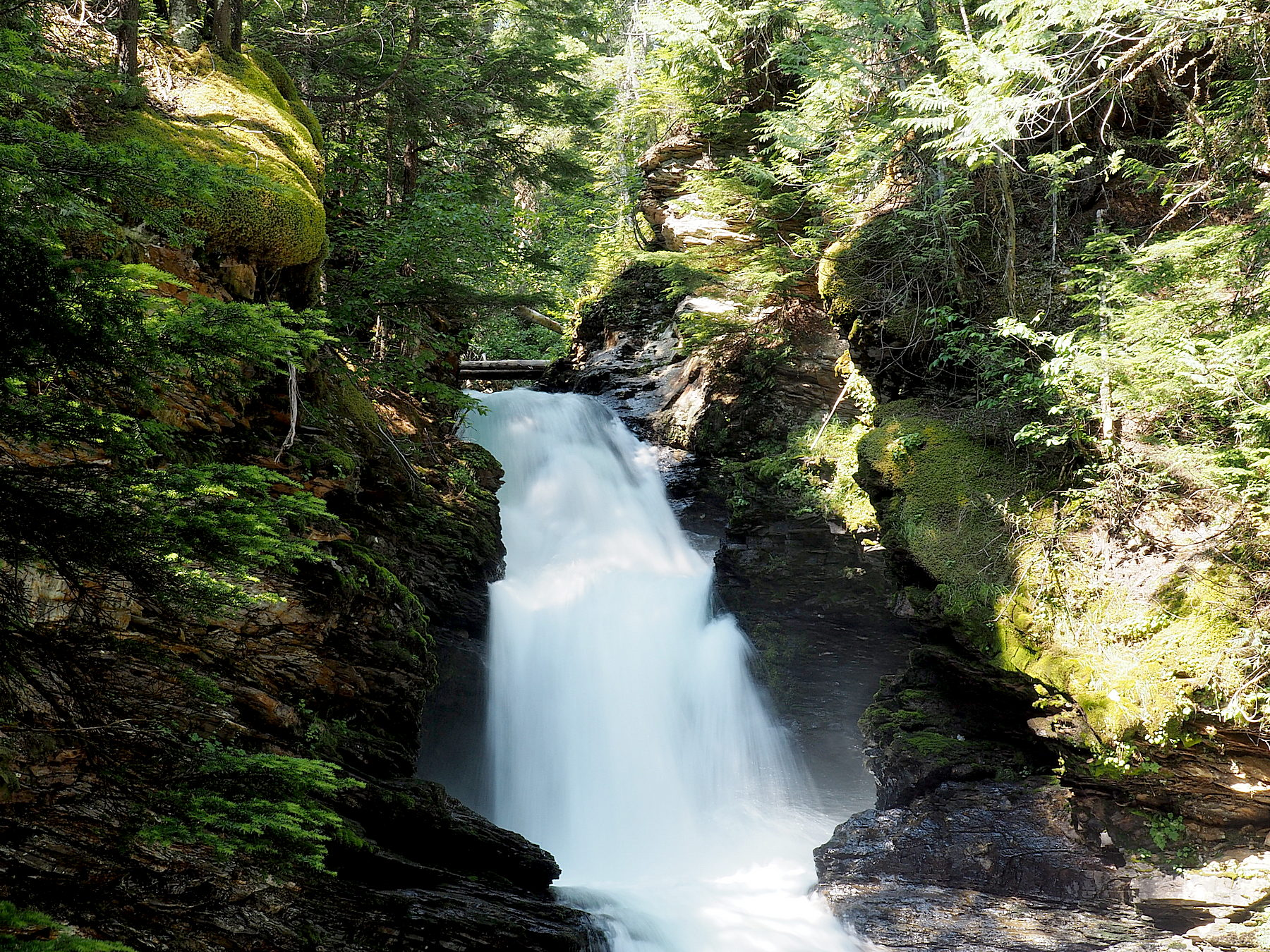 Schöner kleiner Sticta Wasserfall