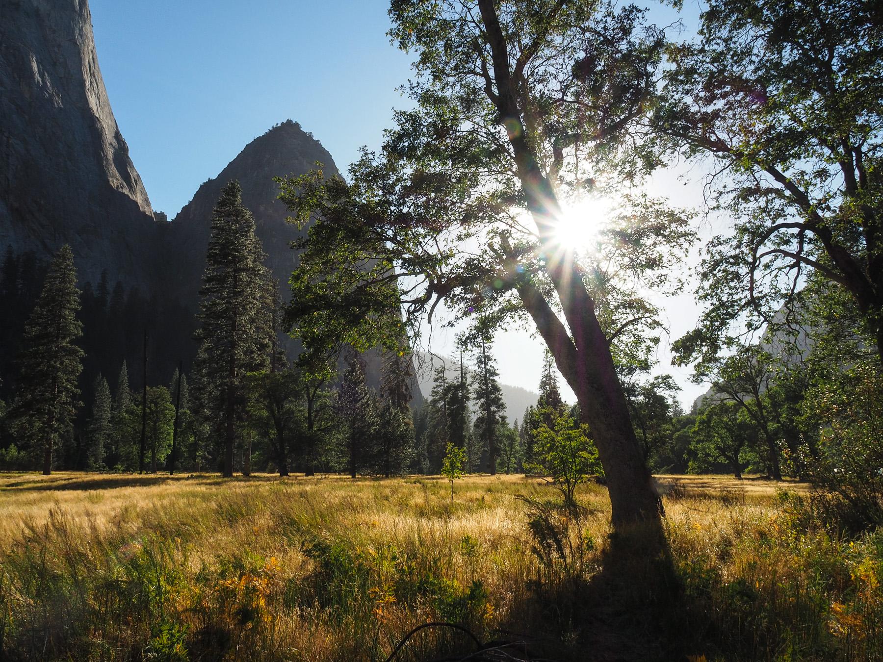 Kleine Wanderungen im Yosemite