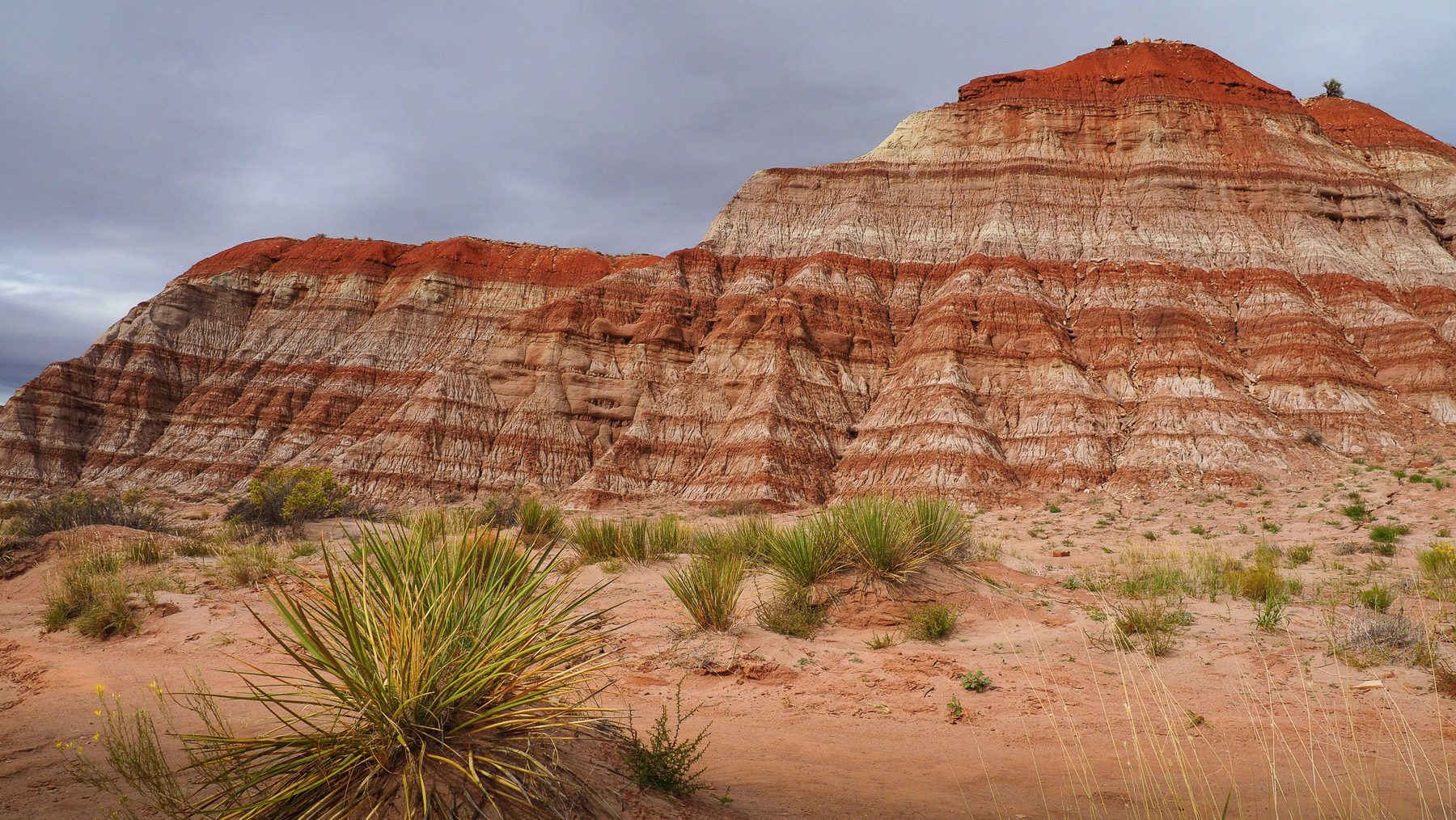 Lohnender Abstecher in den Paria Canyon