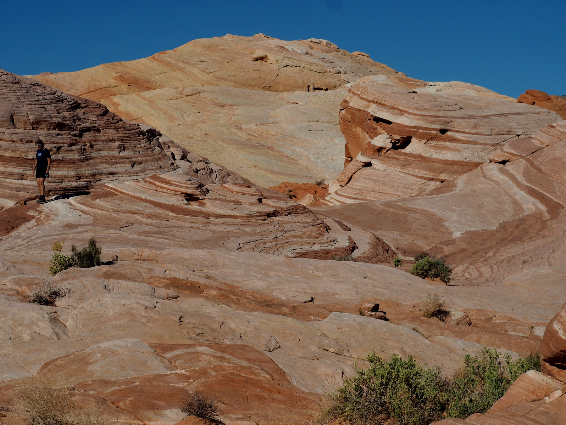 Fire Wave im Valley of Fire