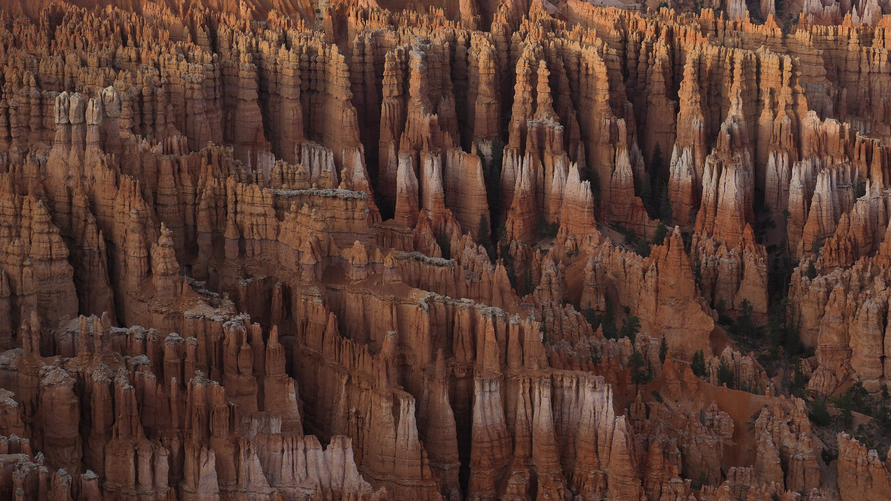 Abendstimmung am Bryce Canyon