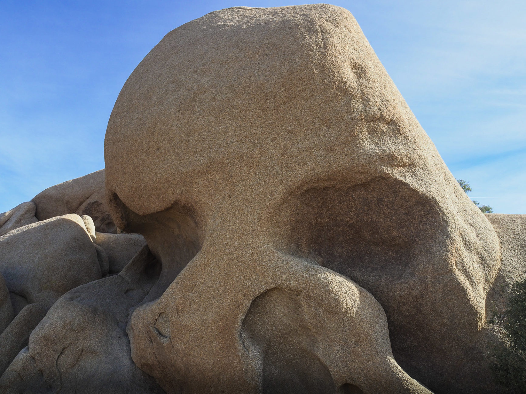 Skull Head Felsen