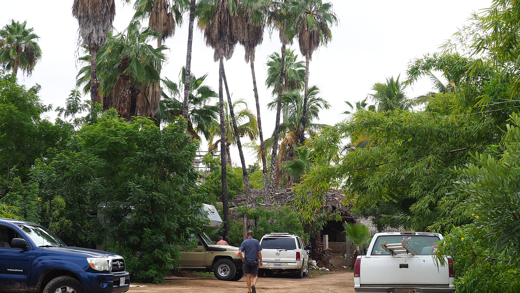 Campground in Todos Santos