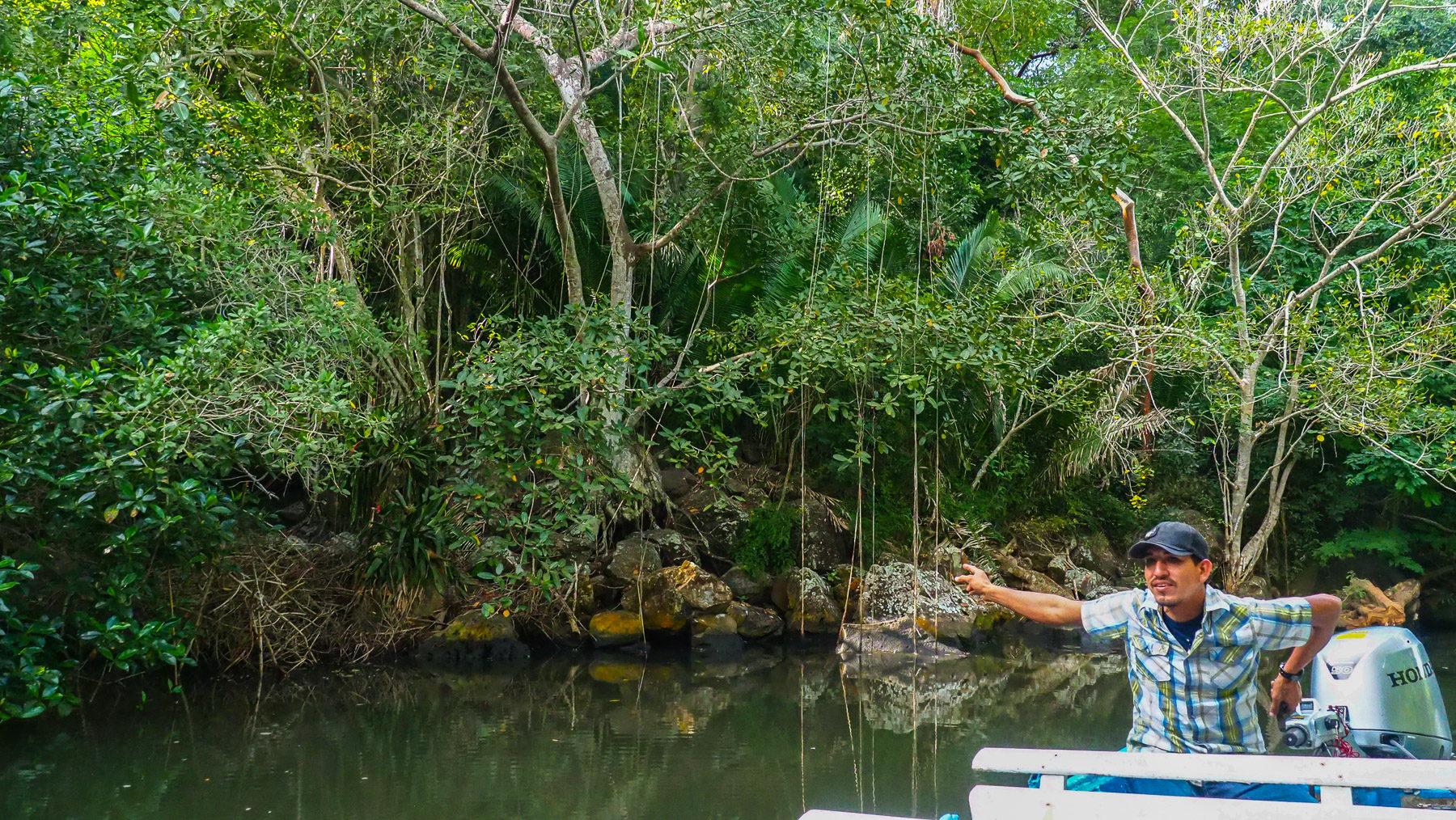 Unser Guide Felipe zeigt und erklärt uns alles mit Begeisterung