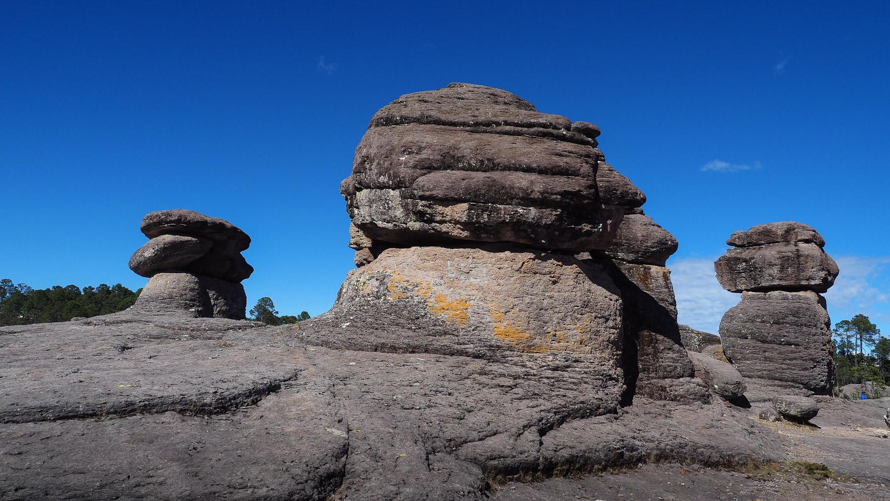 Schöner kleiner Naturpark Mexiquillo auf dem Hochland