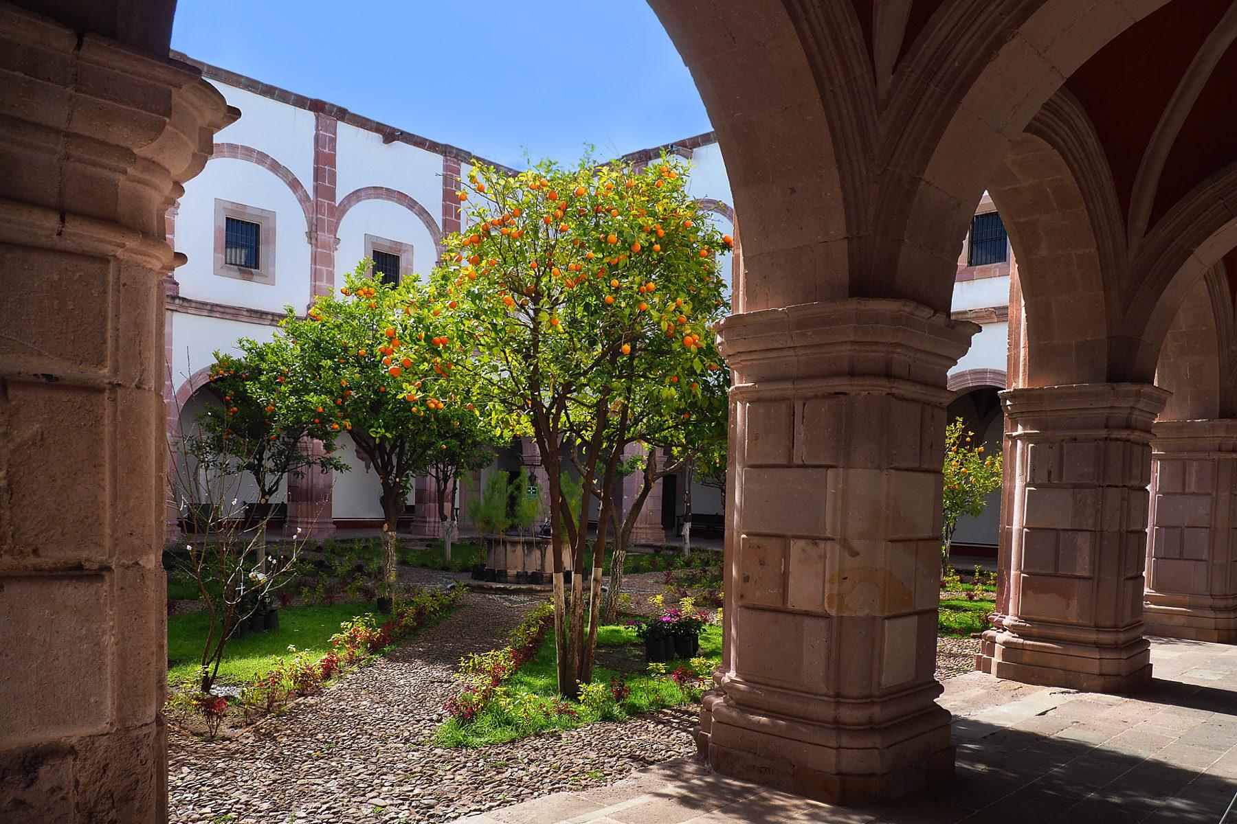 Idyllischer Klostergarten mit Orangenbäumen