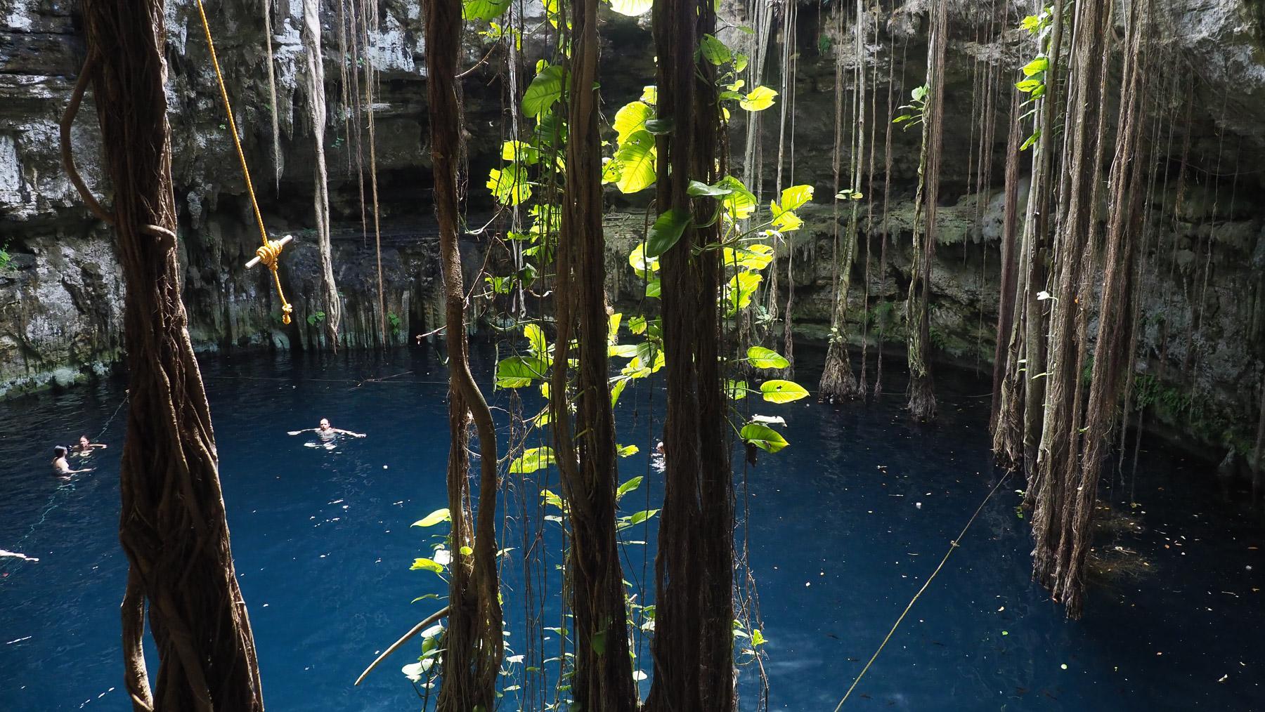 Cenote Ozman - mit Seil zum Rausschwingen