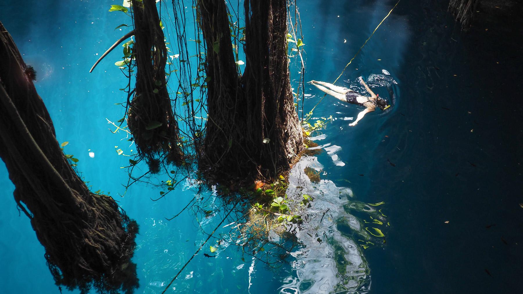 Schwimmen in einer anderen Welt