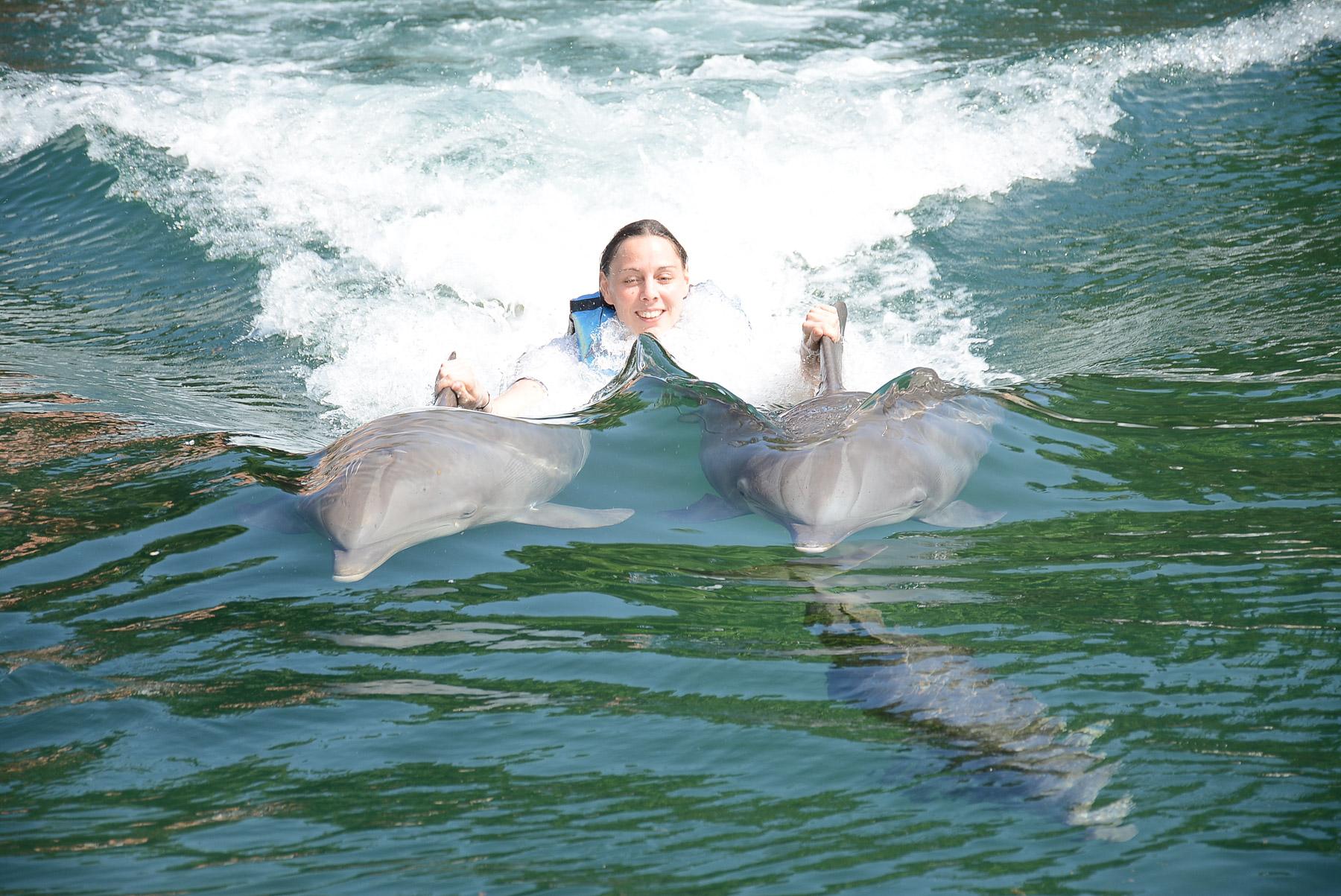 Delfin D-Zug