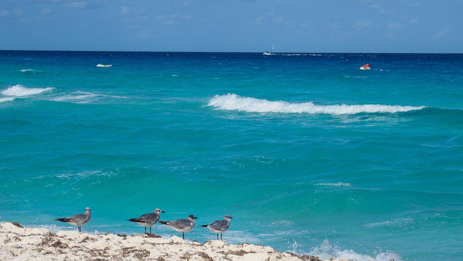 Das Meer in Yukatan ist unglaublich blau und türkis!