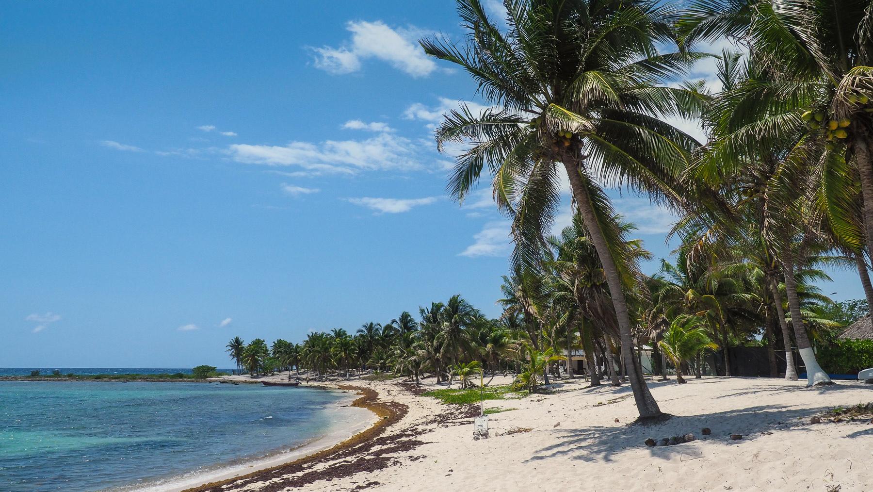 Entspannen unter Palmen in Paamul