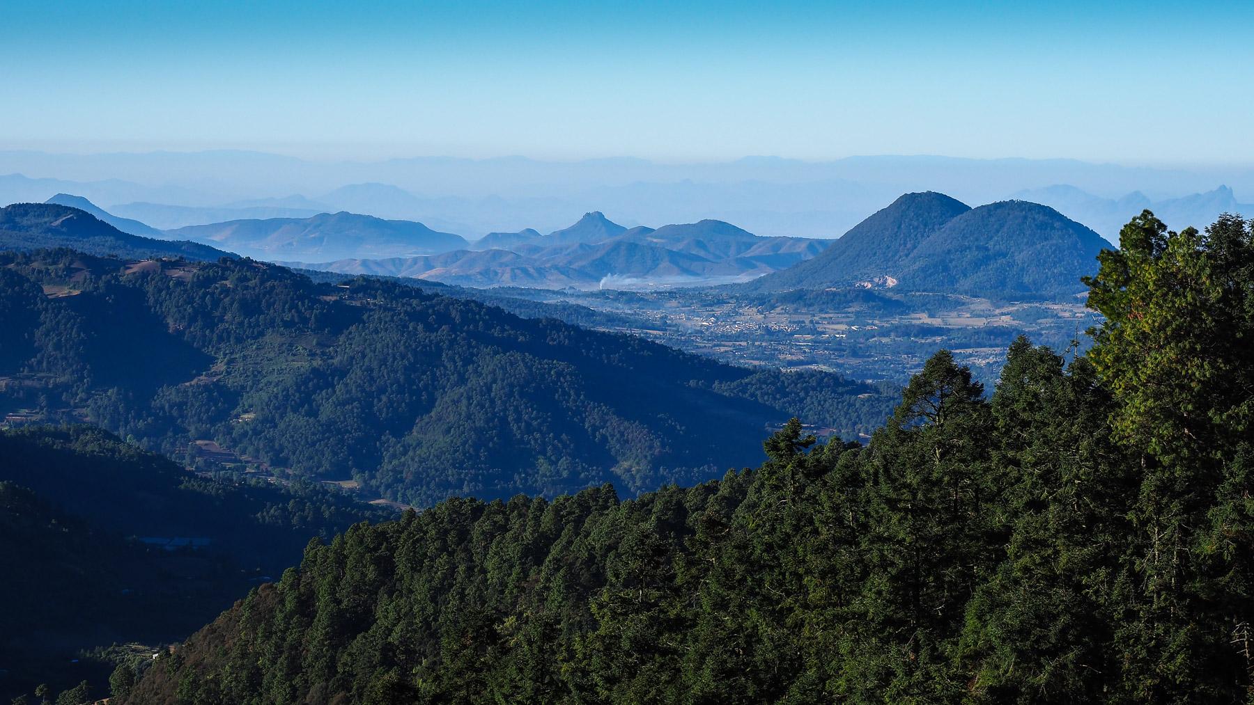 Die von den Monarchfaltern bevorzugten Wälder auf 3000 m Höhe.