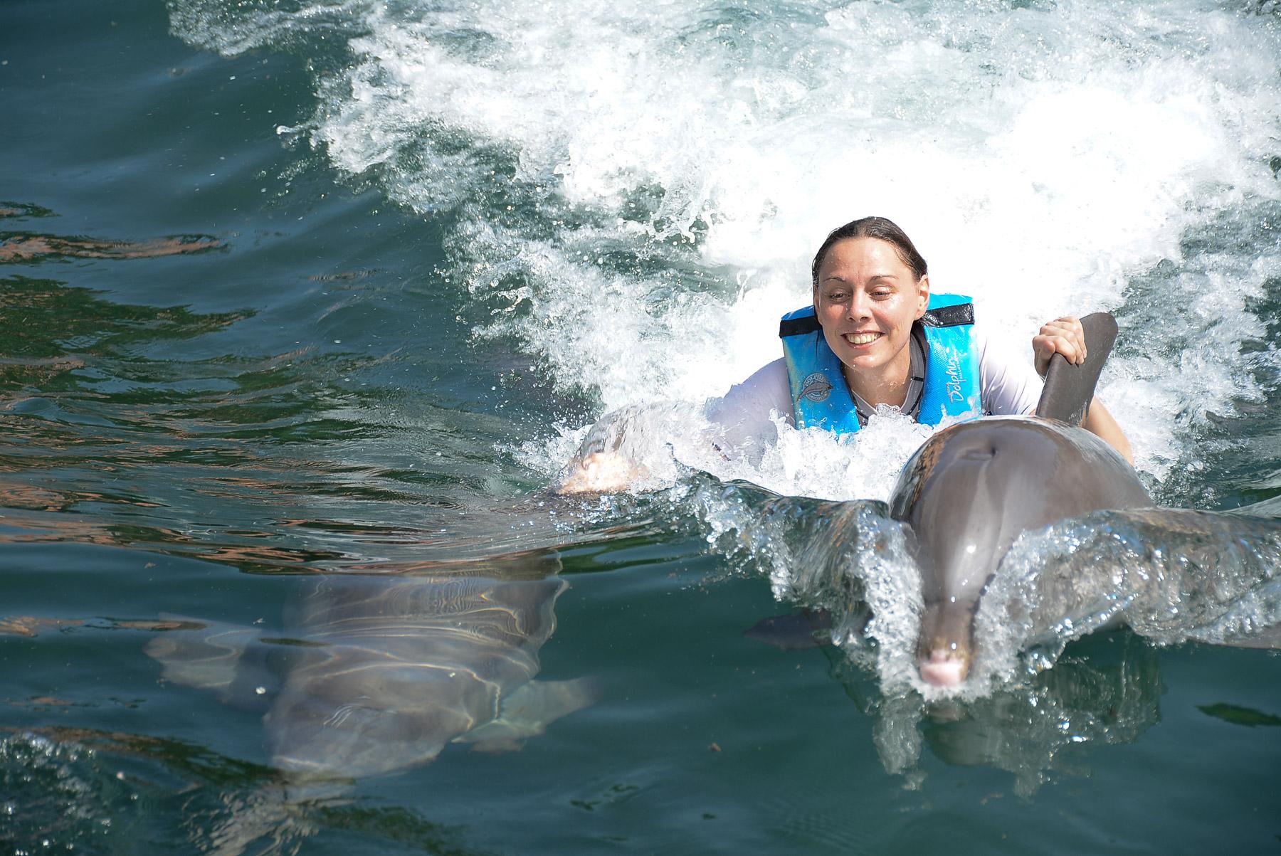 Unvergessliche Spiele mit Delphinen