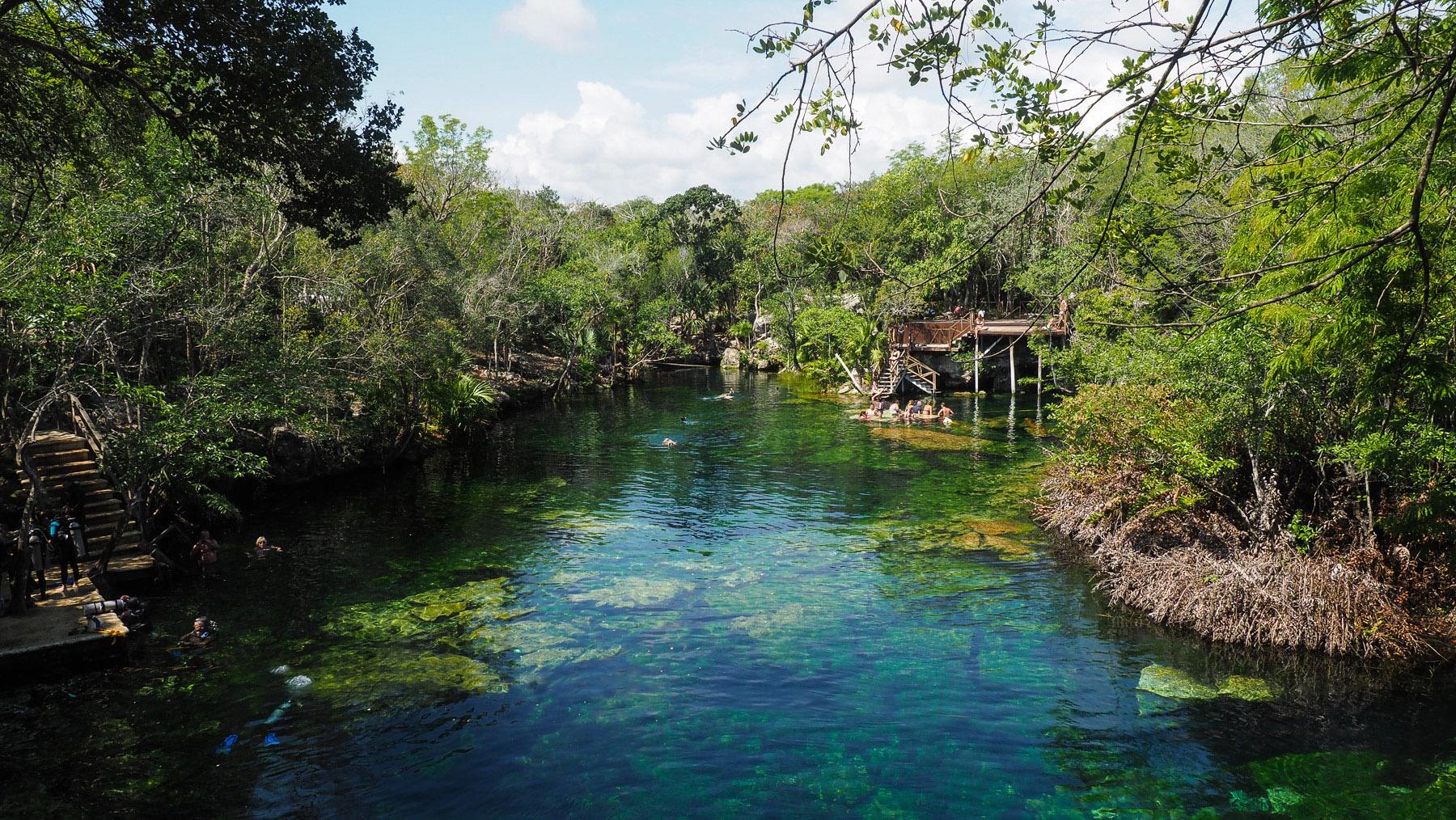 Cenote Eden, Taucher- und Schnorchelparadies