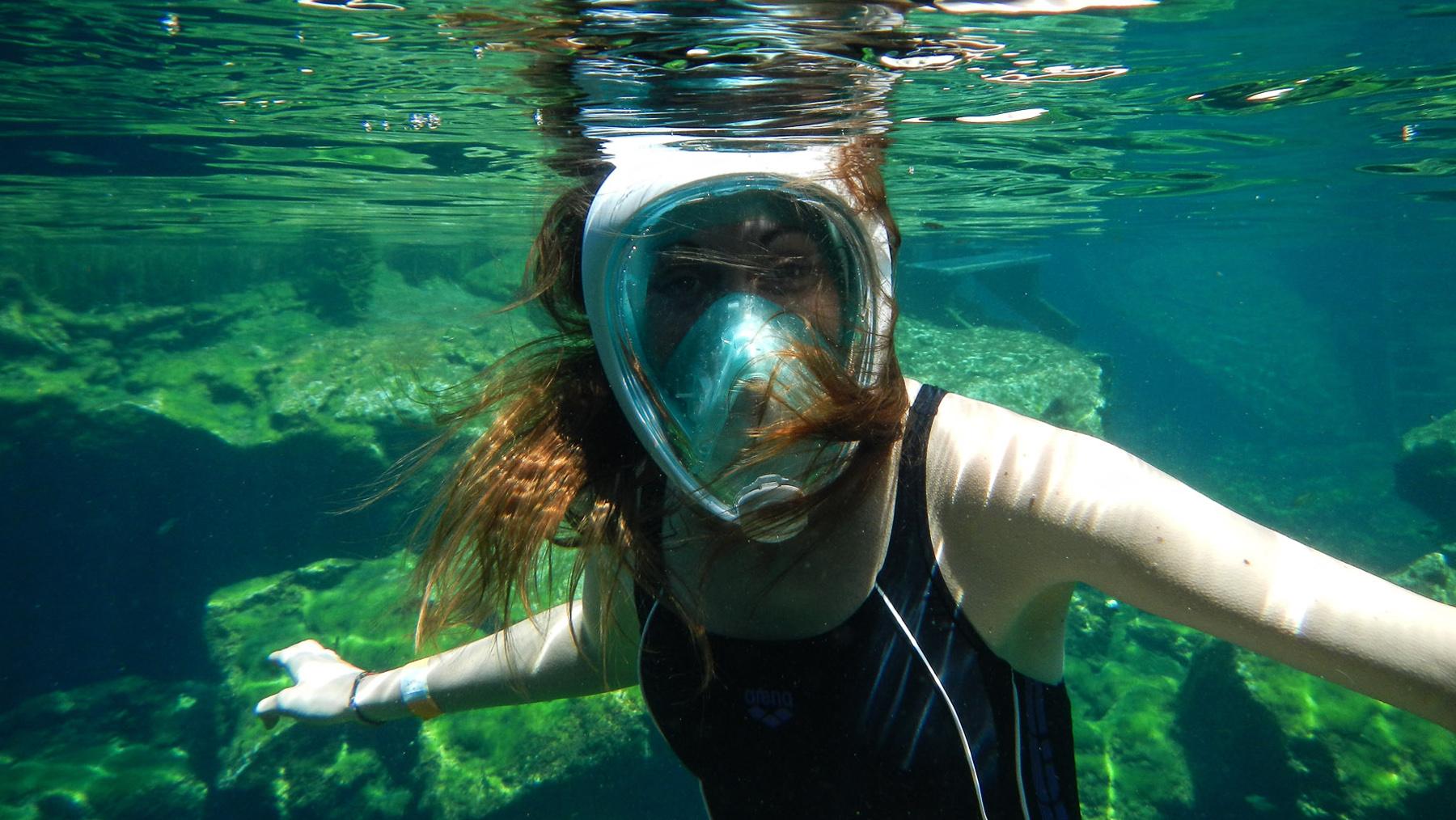 Wie im Aquarium in der Cenote Eden