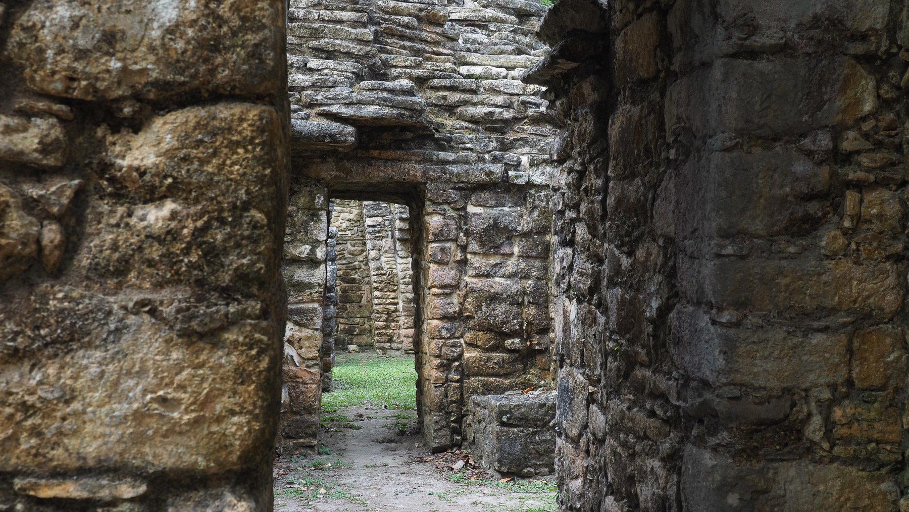 Beeindruckende Maya Ruinen tief im Dschungel