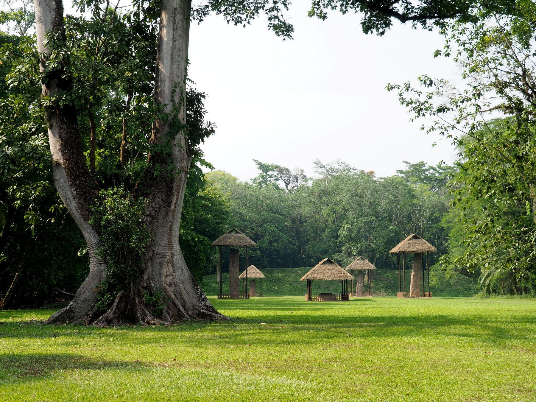 Große Stelen, noch größere Bäume