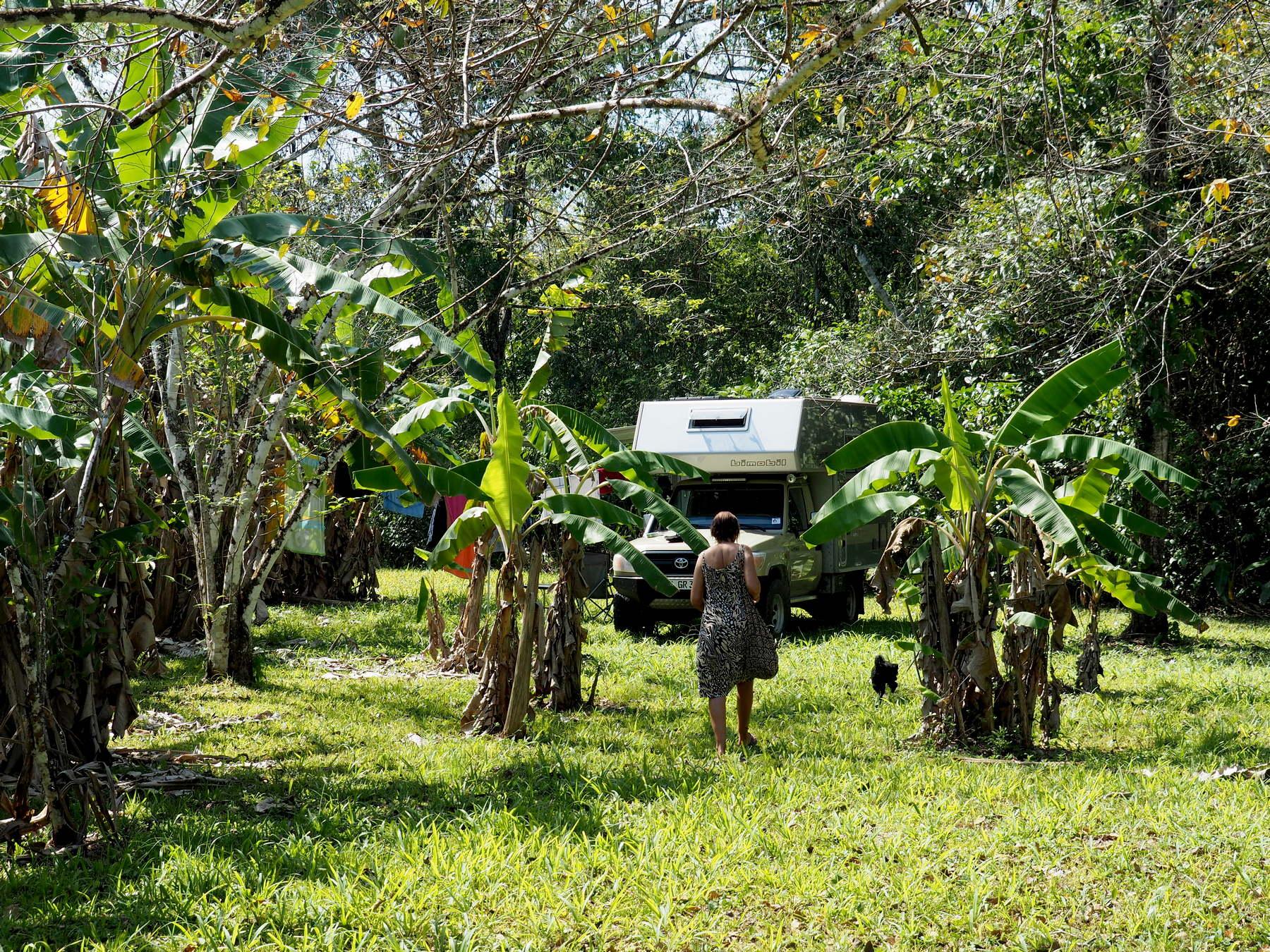 Platz in der  Bananenplantage