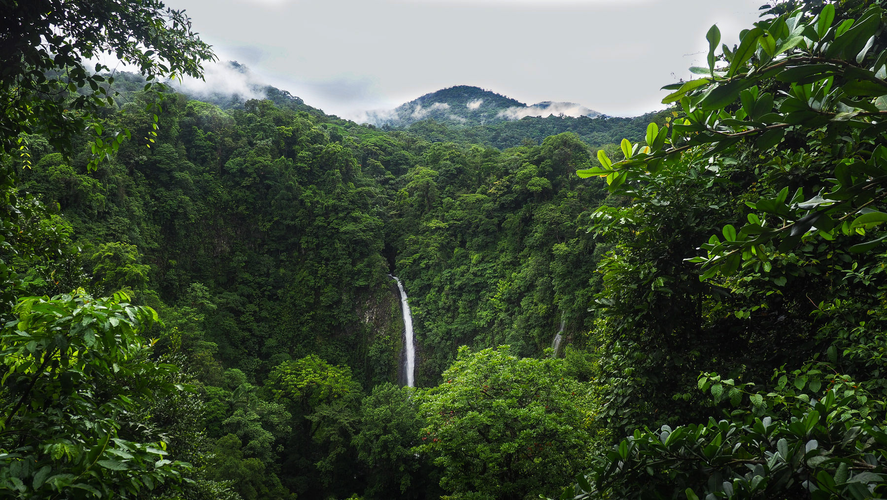 Mitten im Dschungel gelegen: der La Fortuna Wasserfall