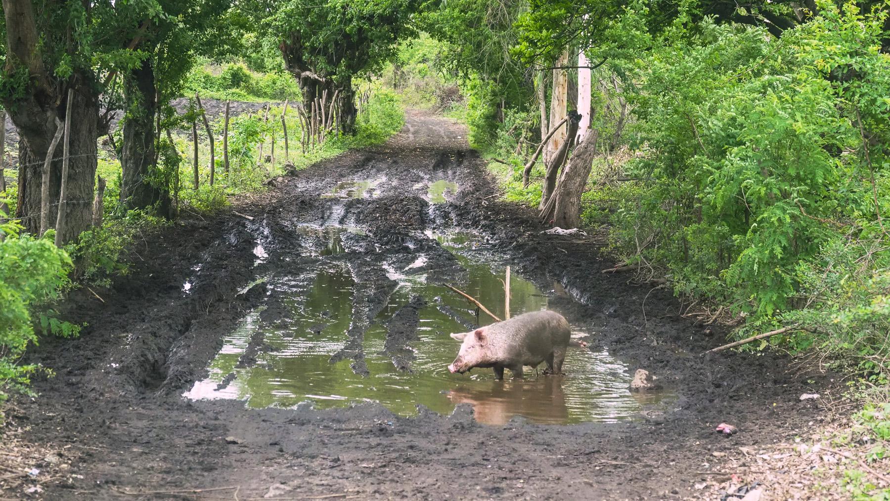 Kein Durchkommen mehr auf den Nebenstraßen in der Regenzeit