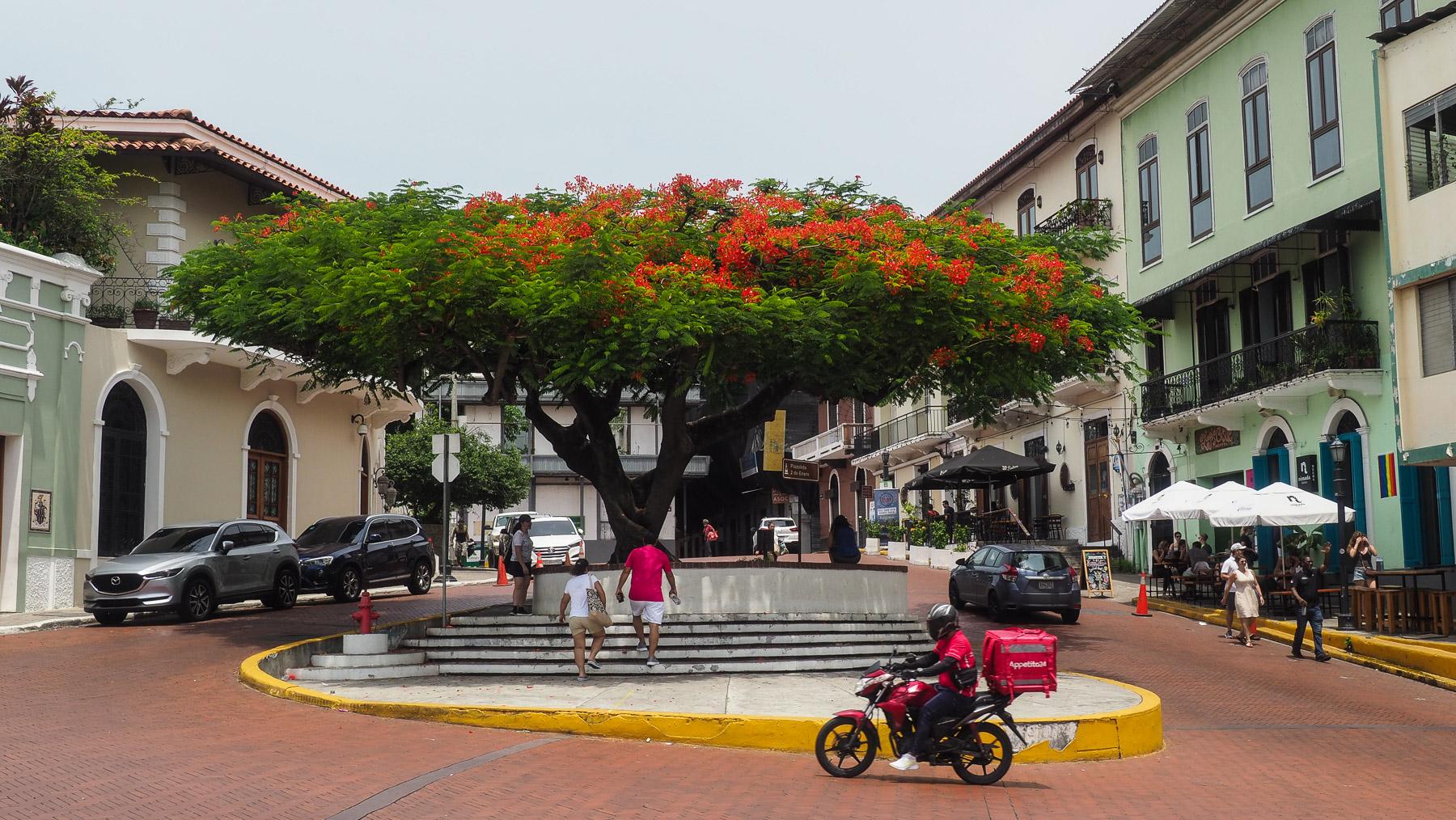 ...und malerische Plätze in Panama City