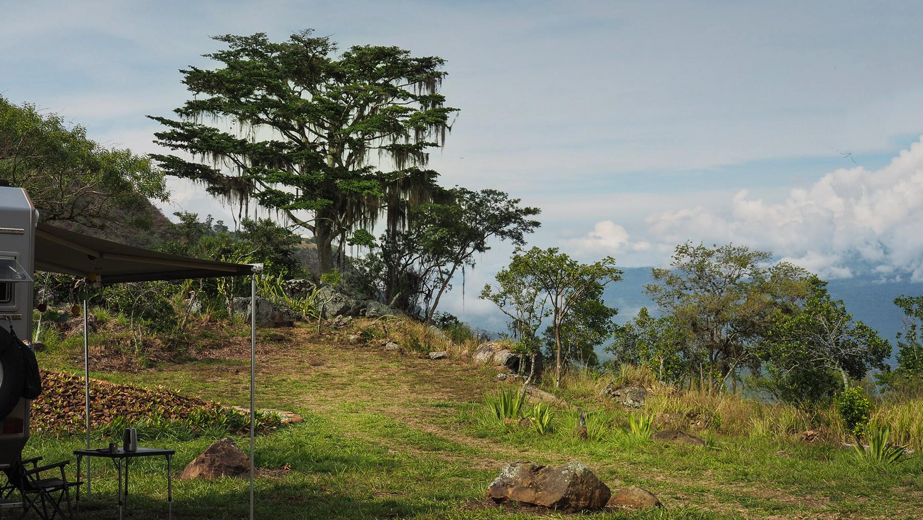 Der Guaimaro Baum, nach dem die Finca benannt ist