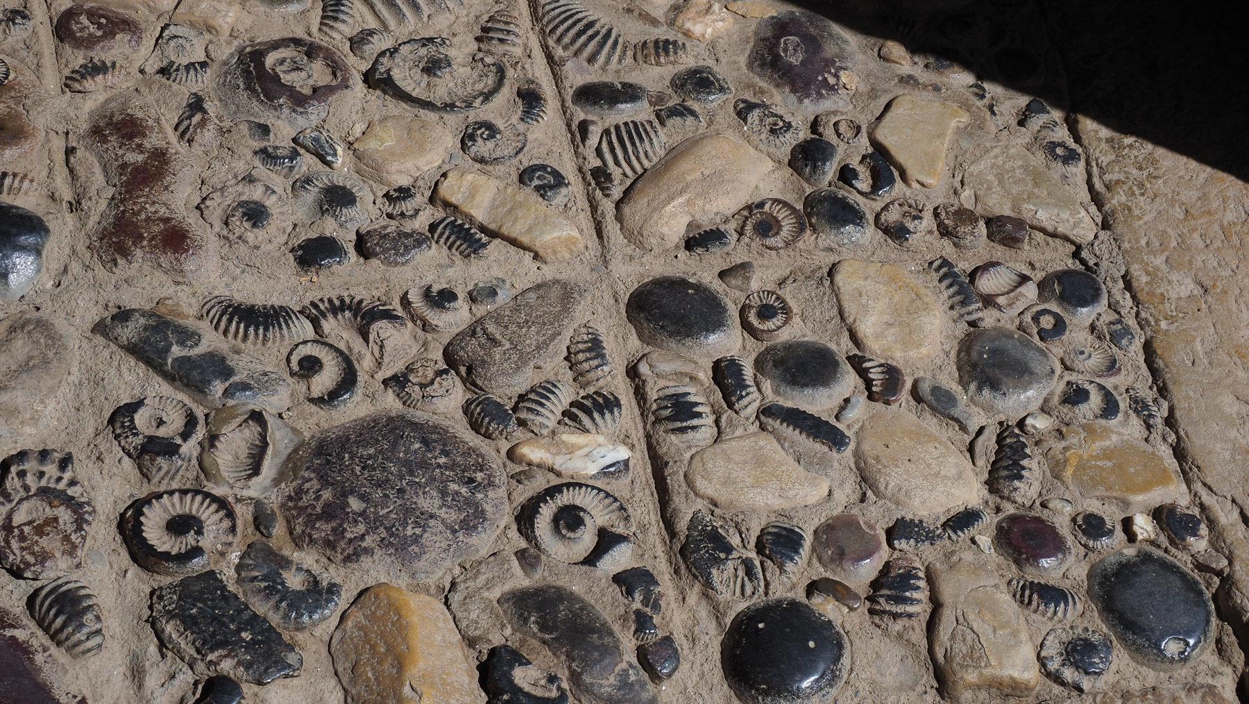 Unglaubliches Fossilien-Pflaster im Kloster!