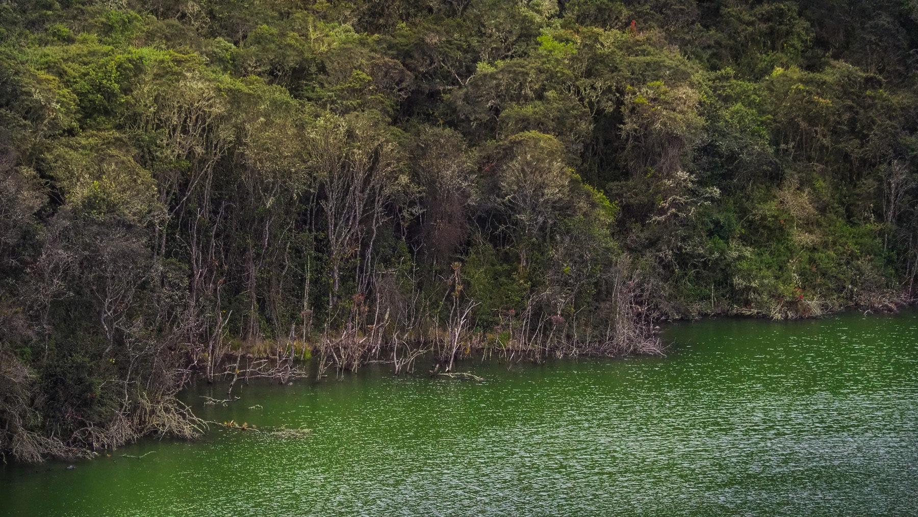 Die Muiscas warfen angeblich wertvolle Opfergaben in den heiligen See