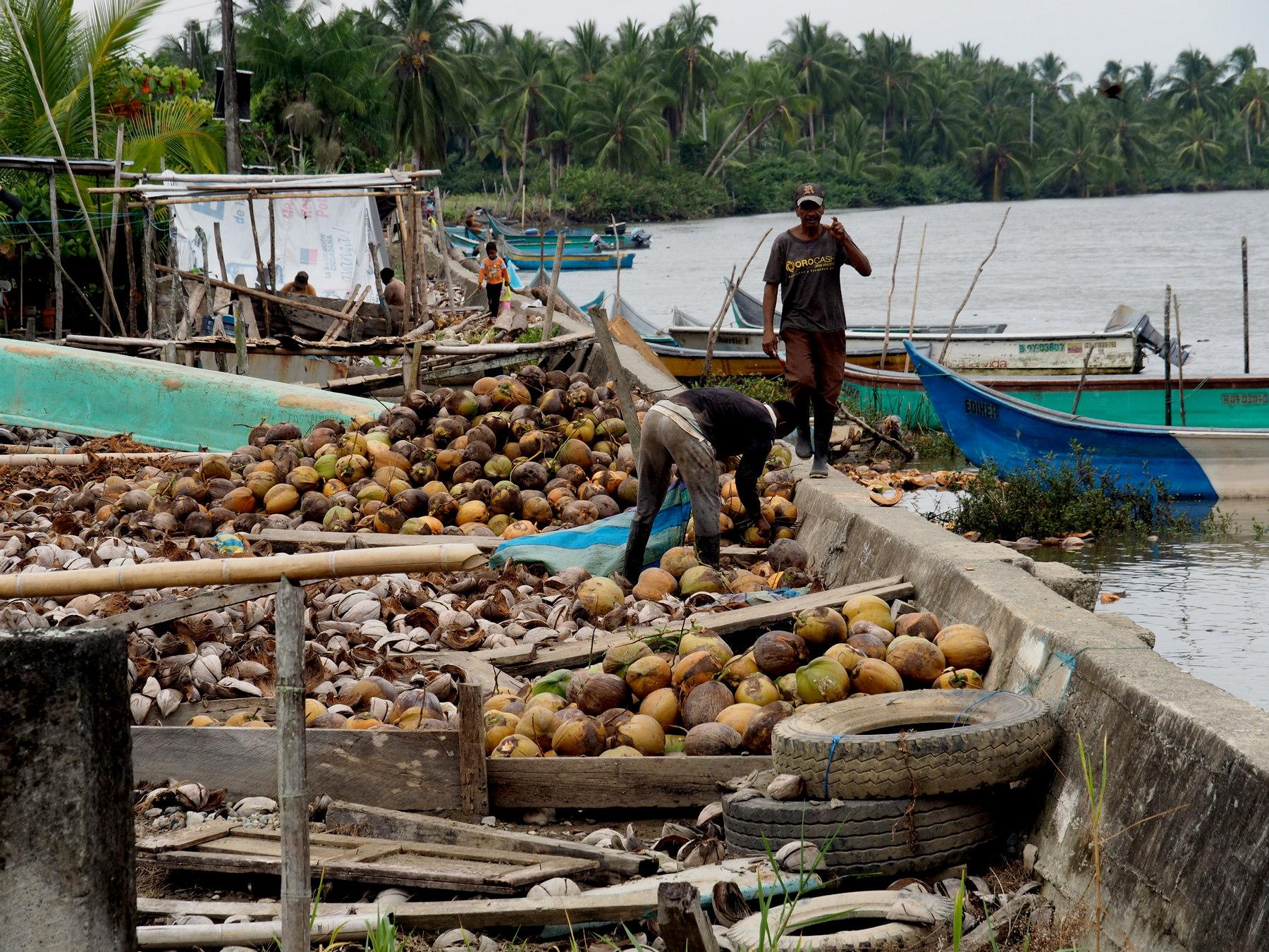Hier dreht sich alles um die Kokosnuss (und Fisch)