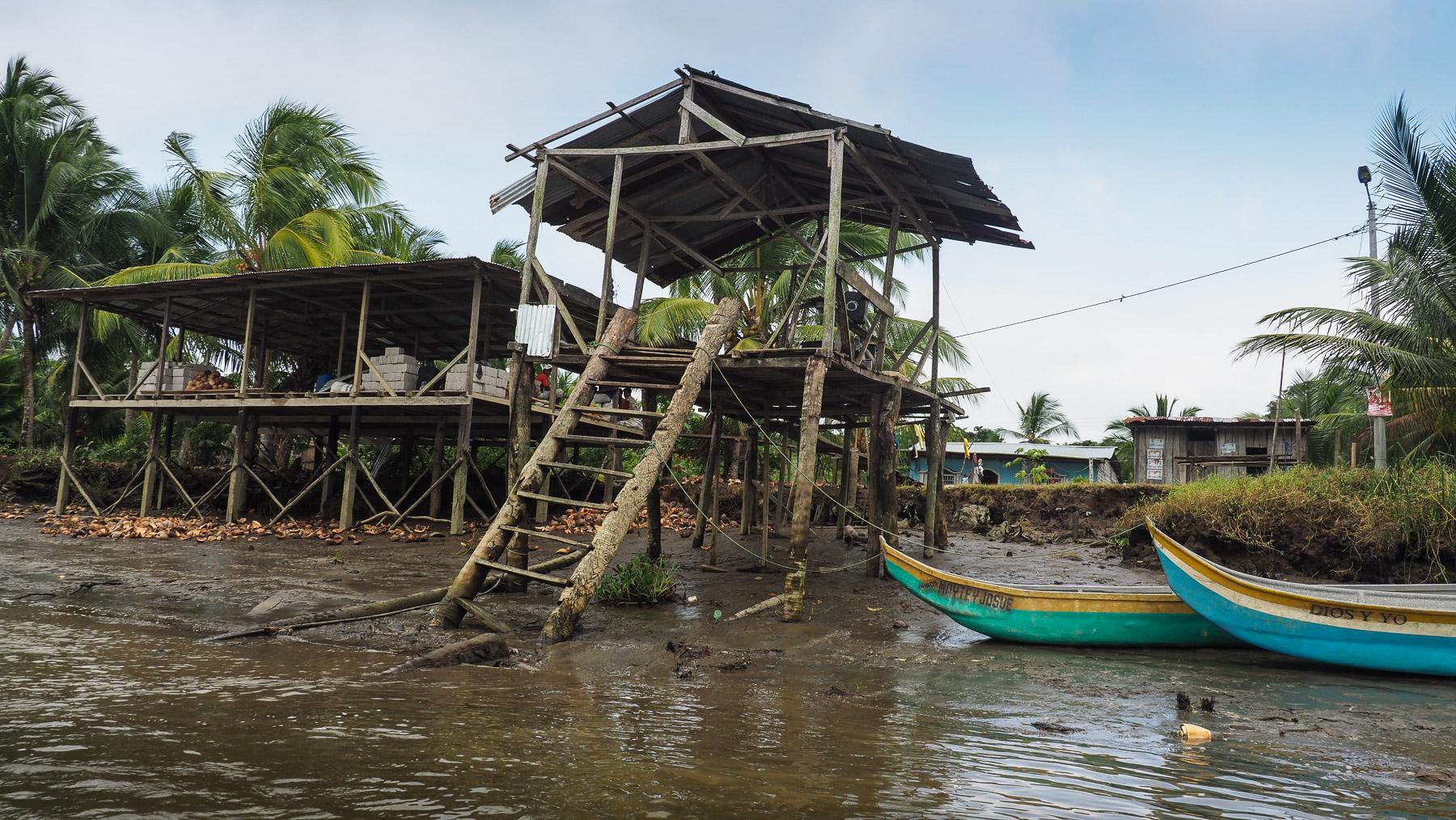 Verarbeitungsplatz für Kokosnüsse