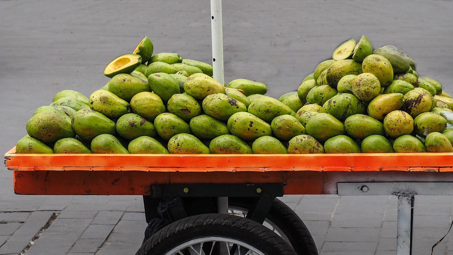 Die Avocados in Kolumbien sind super lecker und allgegenwärtig
