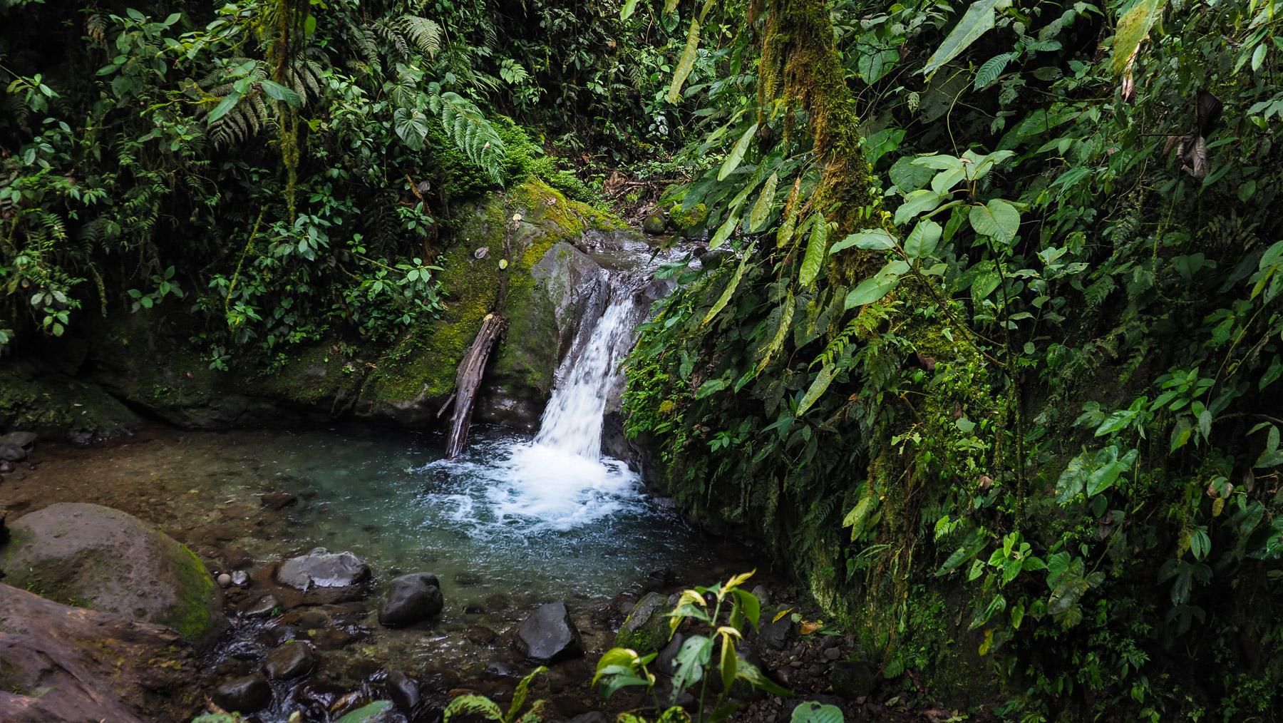 Idyllische Wasserfälle und Badetümpel auf unseren Wanderungen