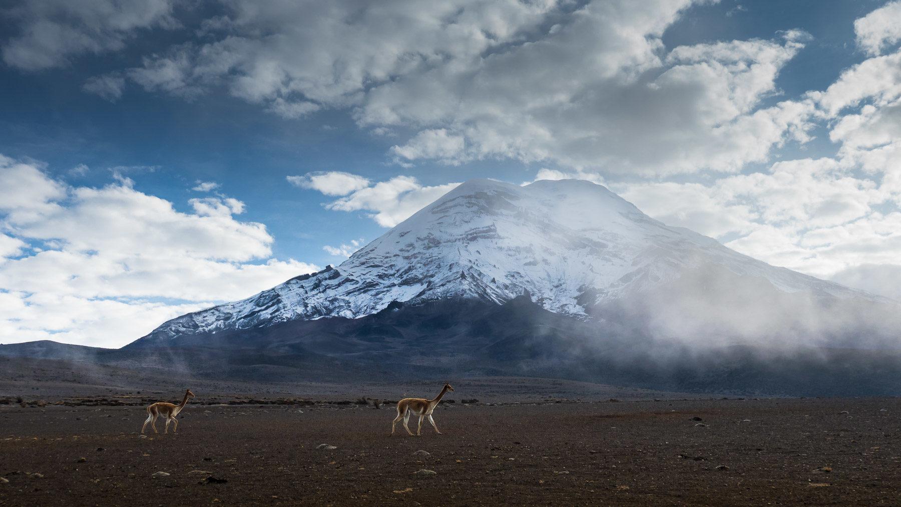 Mystische Stimmung am Chimborazo