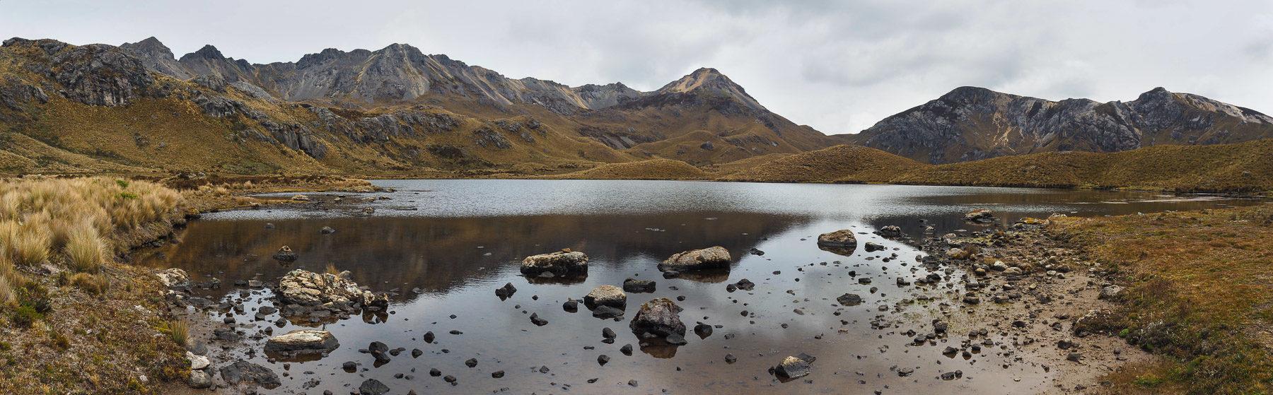 Viele kleine Seen in der Graslandschaft in Cajas