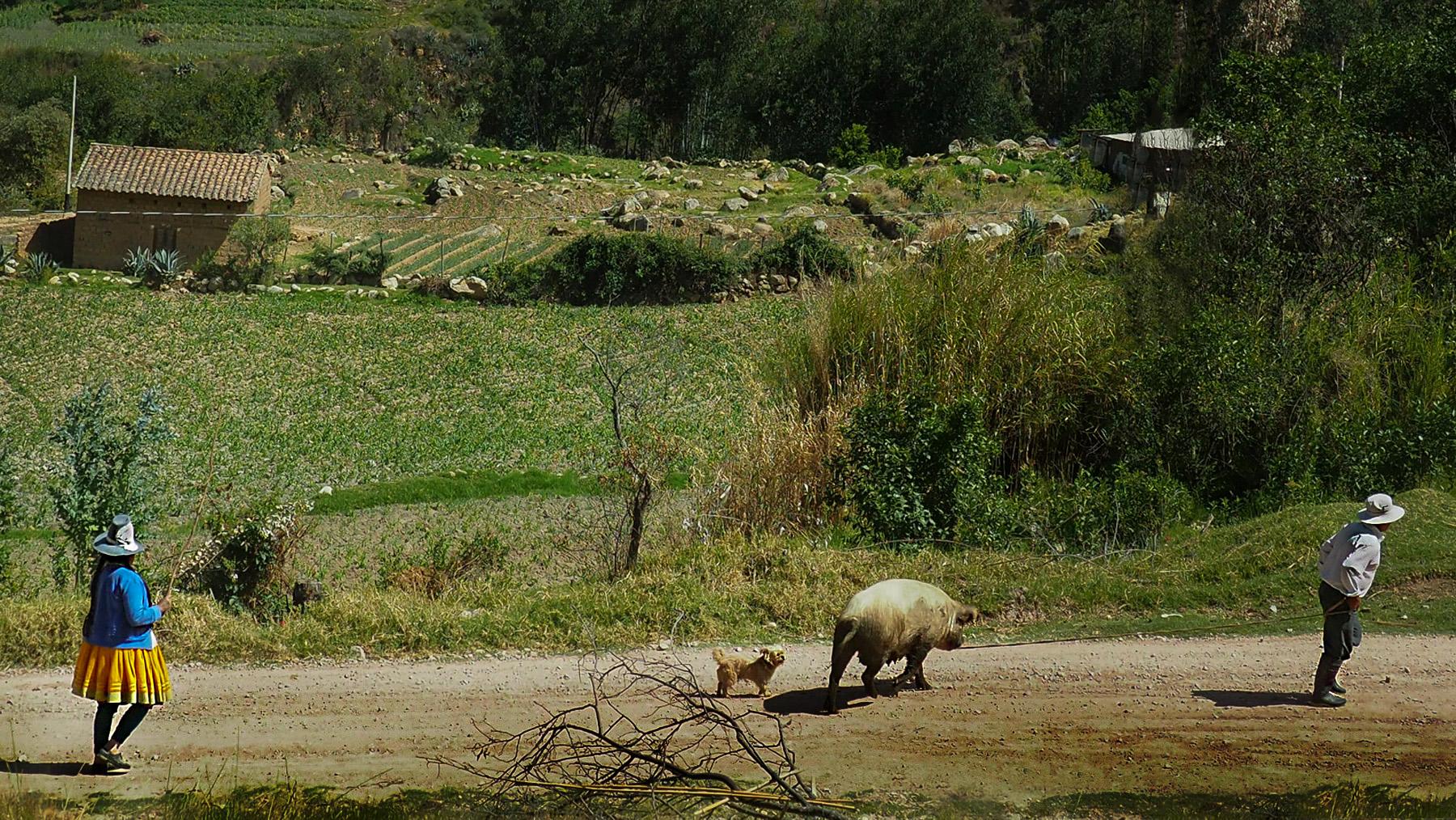 Peruanisches Dorfleben