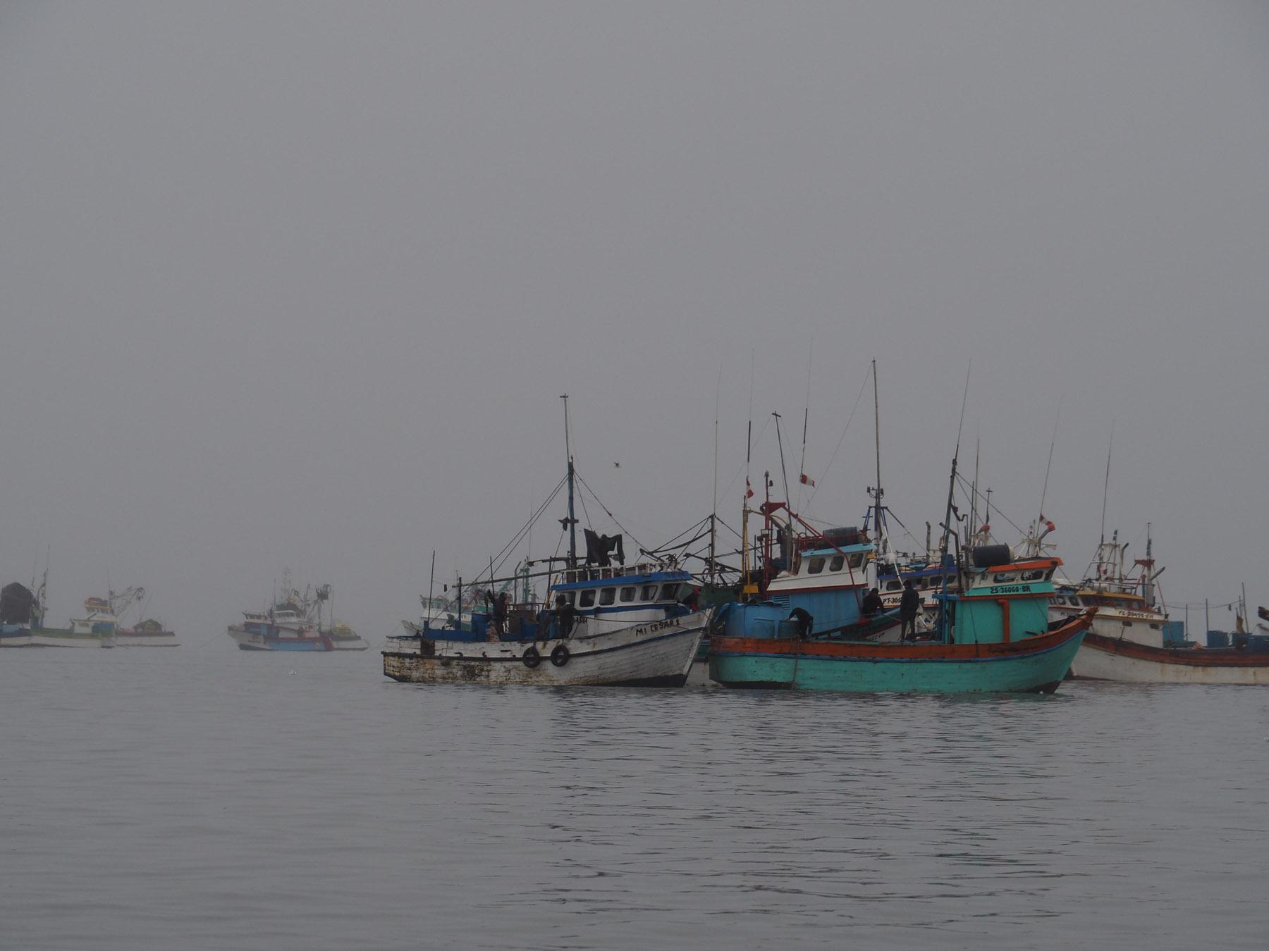 Im Hafen von Paracas