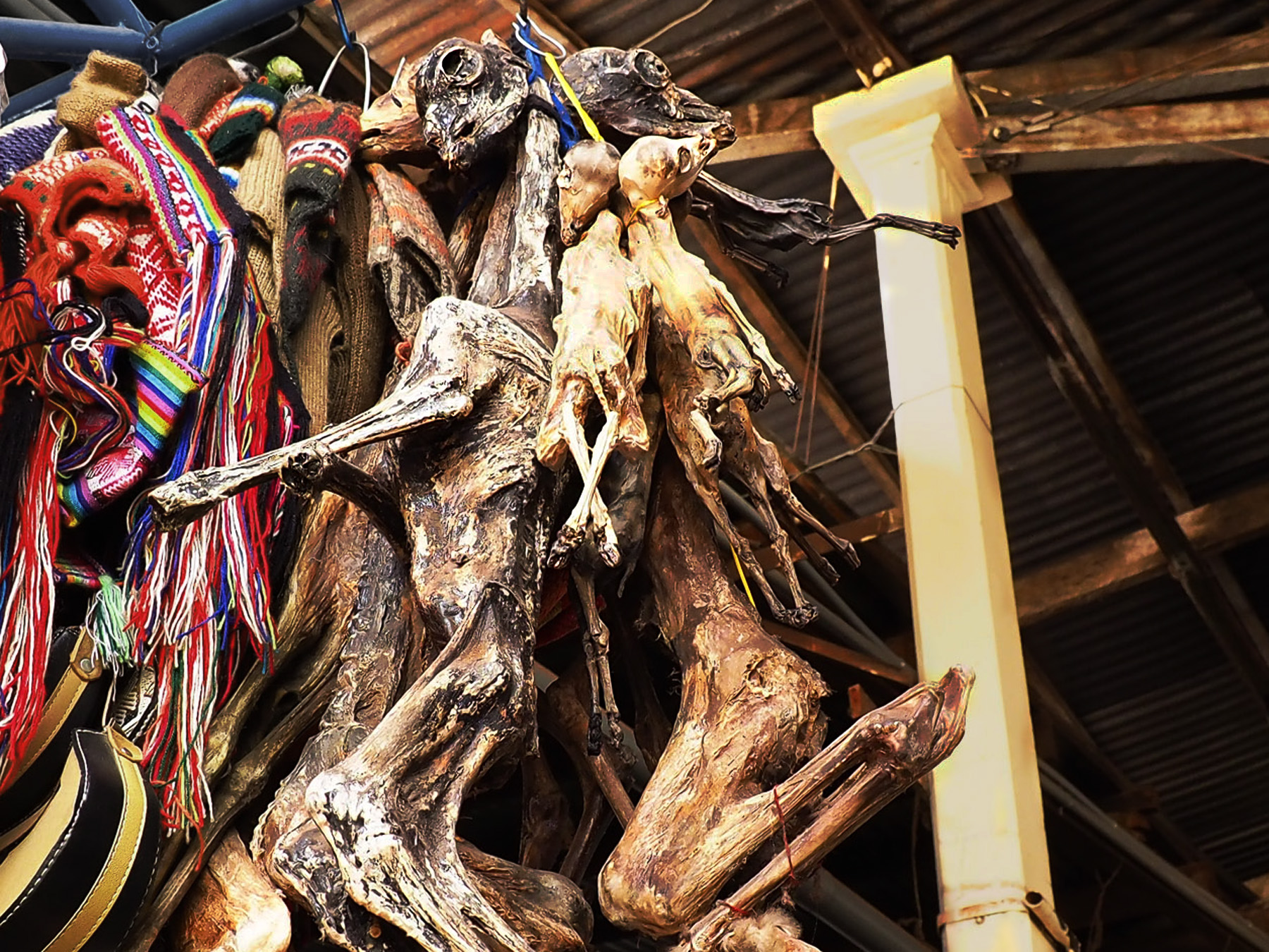 Getrocknete Lama-Embryos auf dem Markt, die für alte Rituale benutzt werden