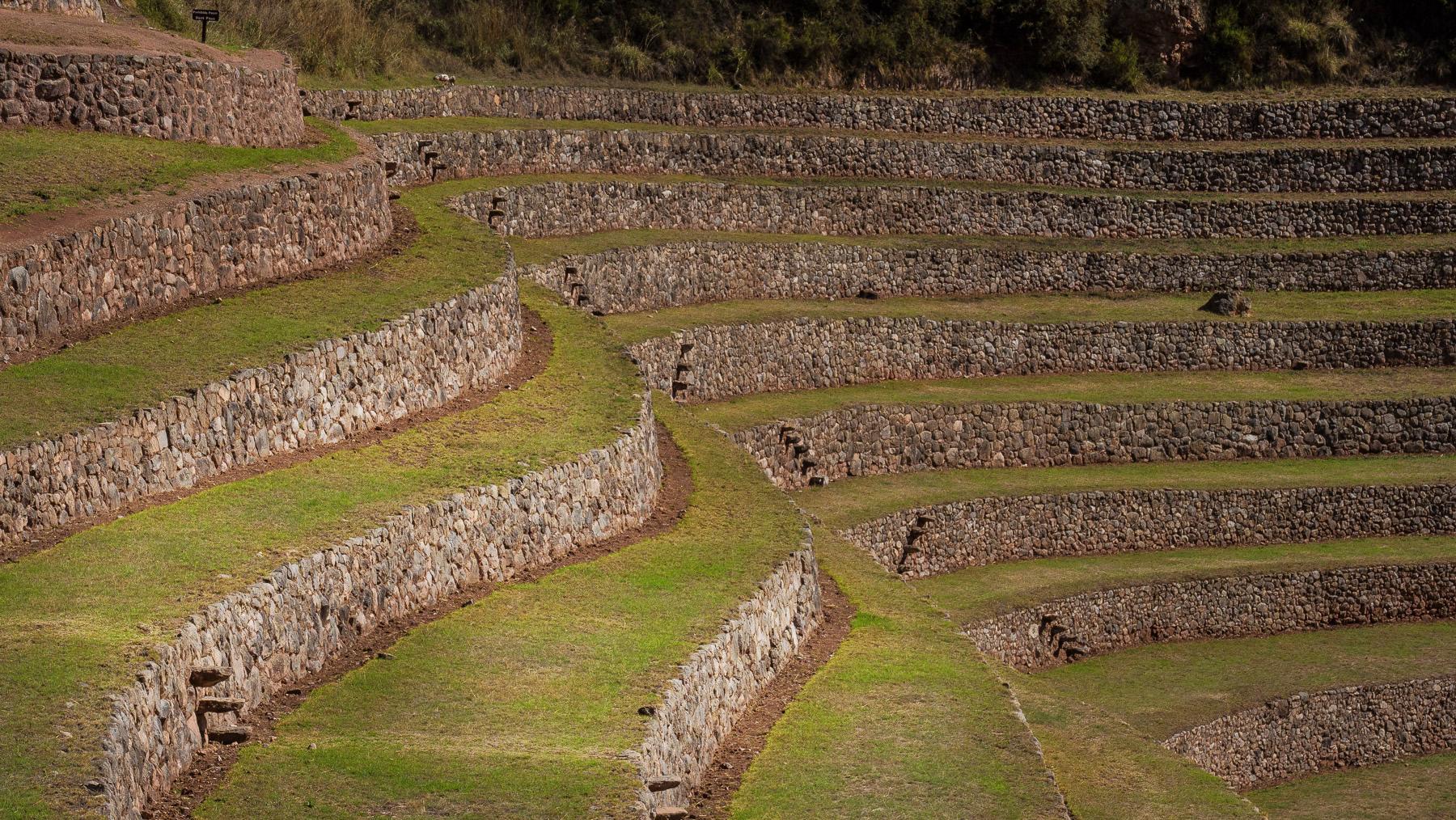 Geometrische Strukturen der Terrassenfelder in Moray